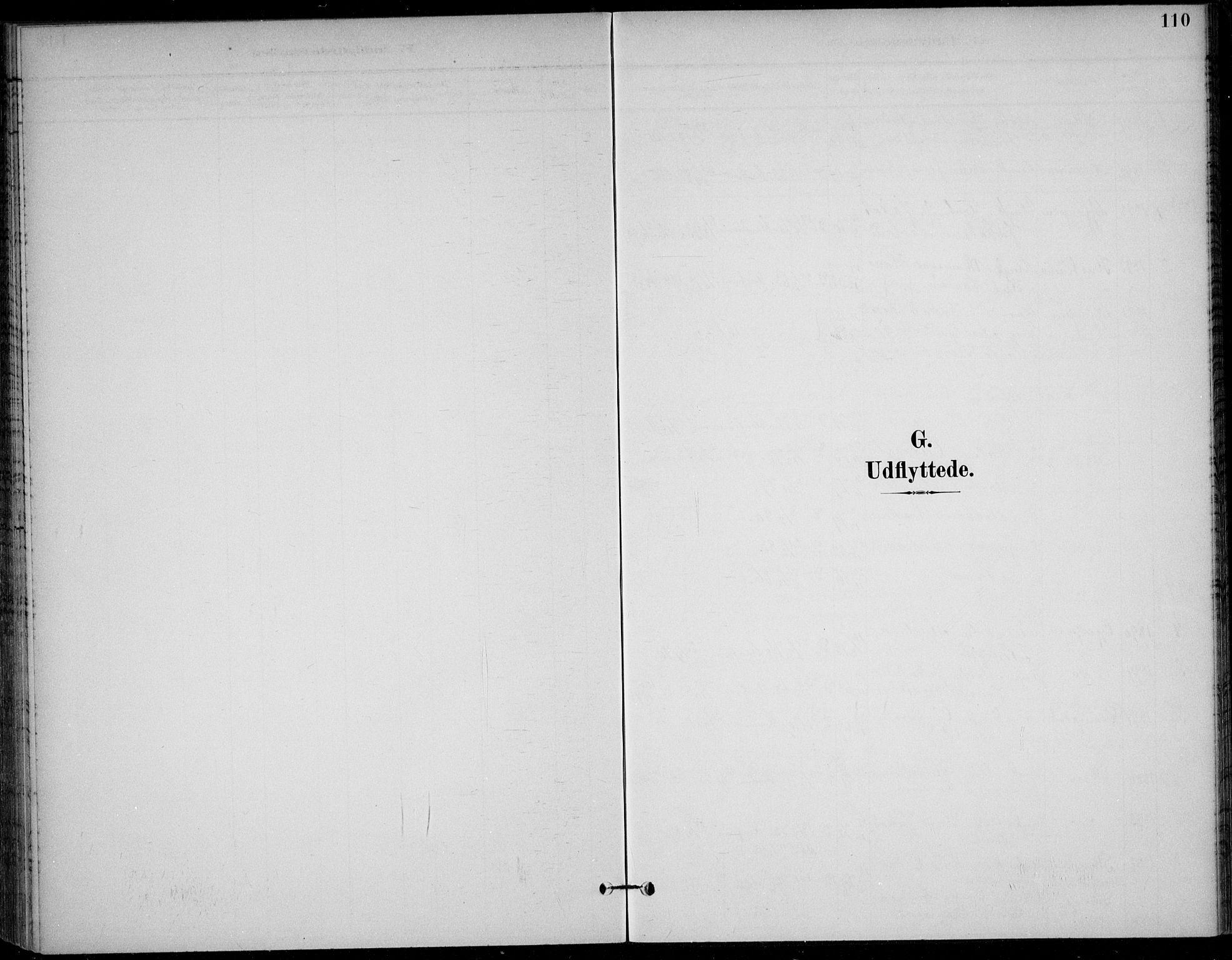 SAKO, Solum kirkebøker, F/Fc/L0002: Ministerialbok nr. III 2, 1892-1906, s. 110