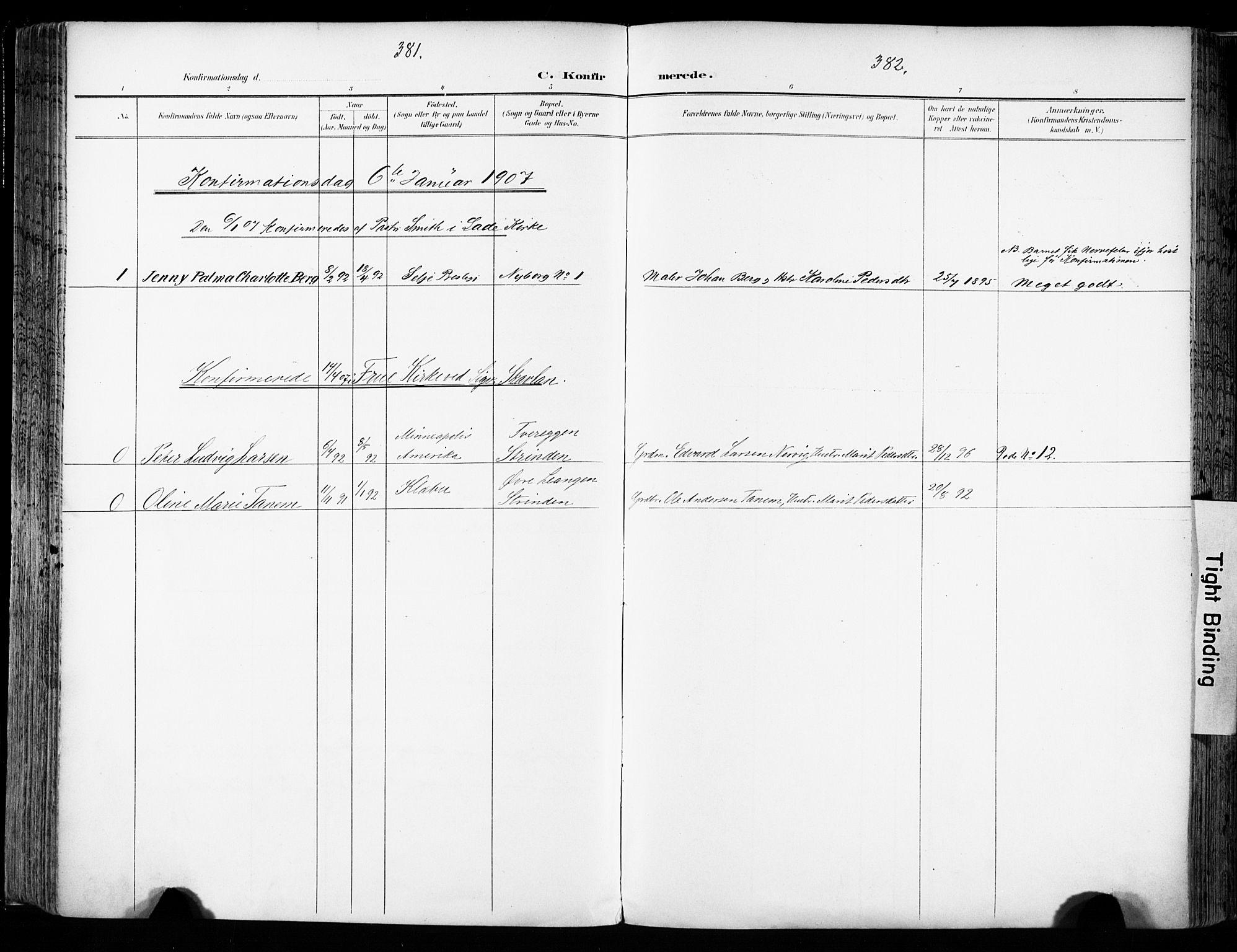 SAT, Ministerialprotokoller, klokkerbøker og fødselsregistre - Sør-Trøndelag, 606/L0301: Ministerialbok nr. 606A16, 1894-1907, s. 381-382