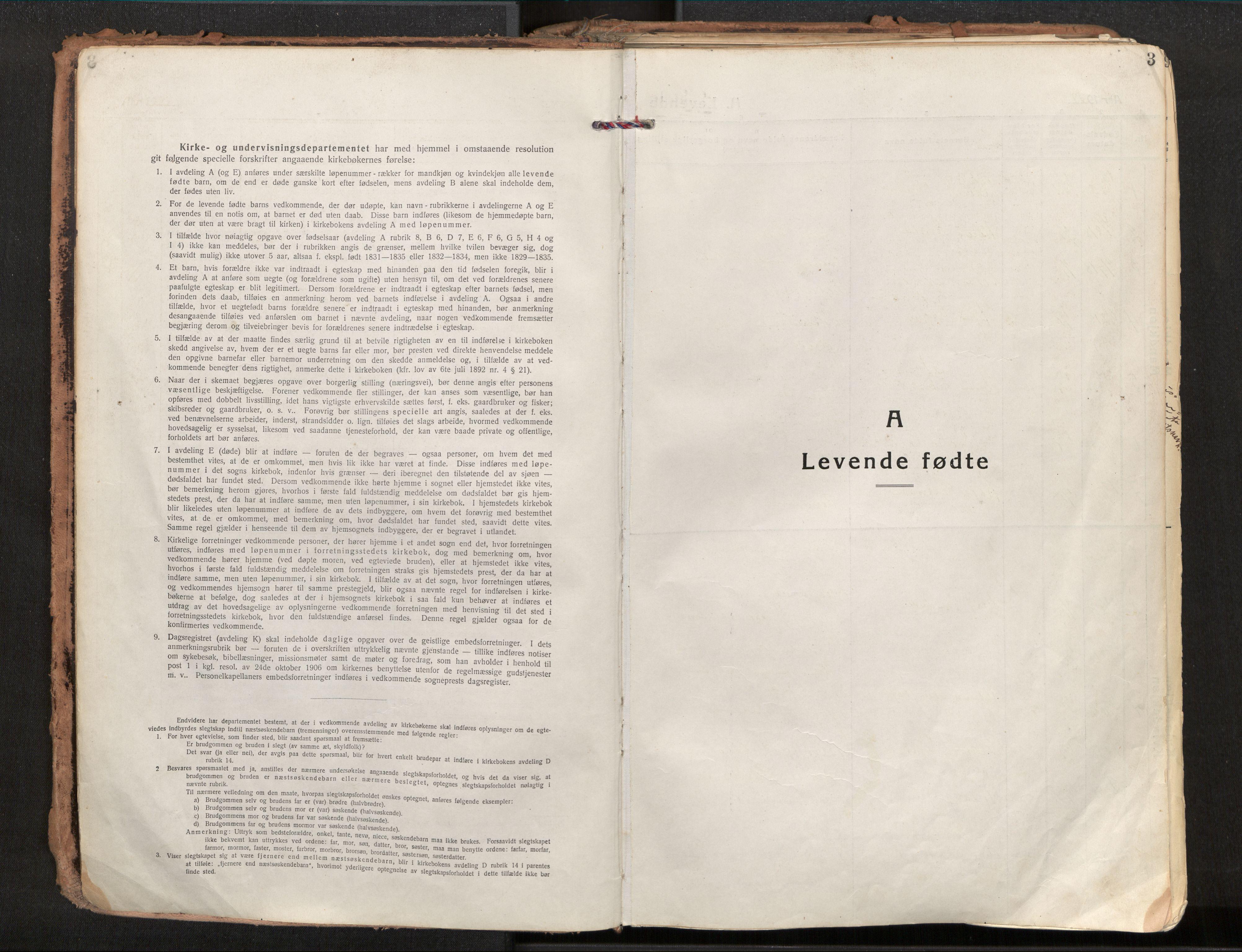 SAT, Ministerialprotokoller, klokkerbøker og fødselsregistre - Nordland, 881/L1160: Ministerialbok nr. 881A13, 1919-1937, s. 3
