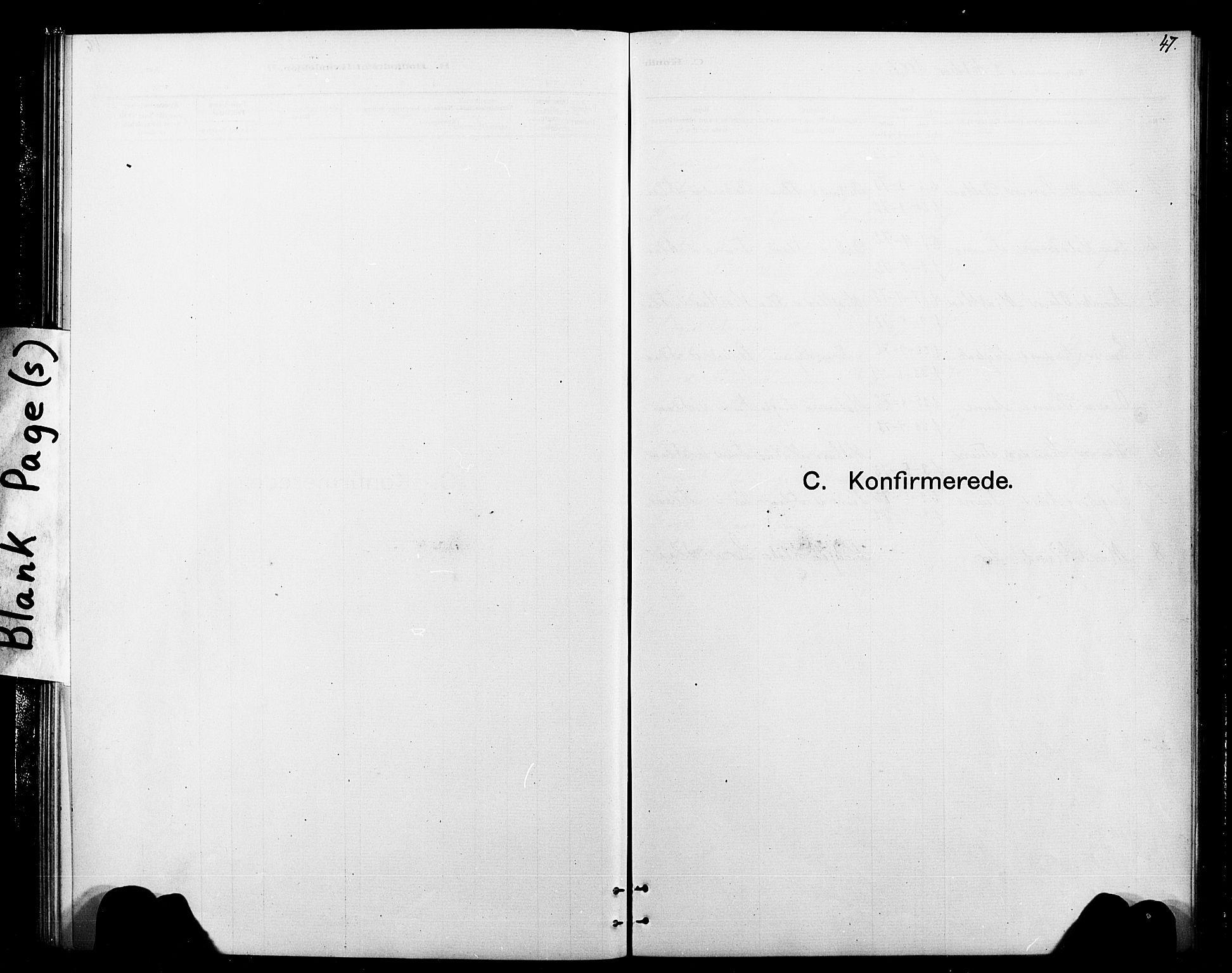 SAT, Ministerialprotokoller, klokkerbøker og fødselsregistre - Sør-Trøndelag, 693/L1123: Klokkerbok nr. 693C04, 1887-1910, s. 47