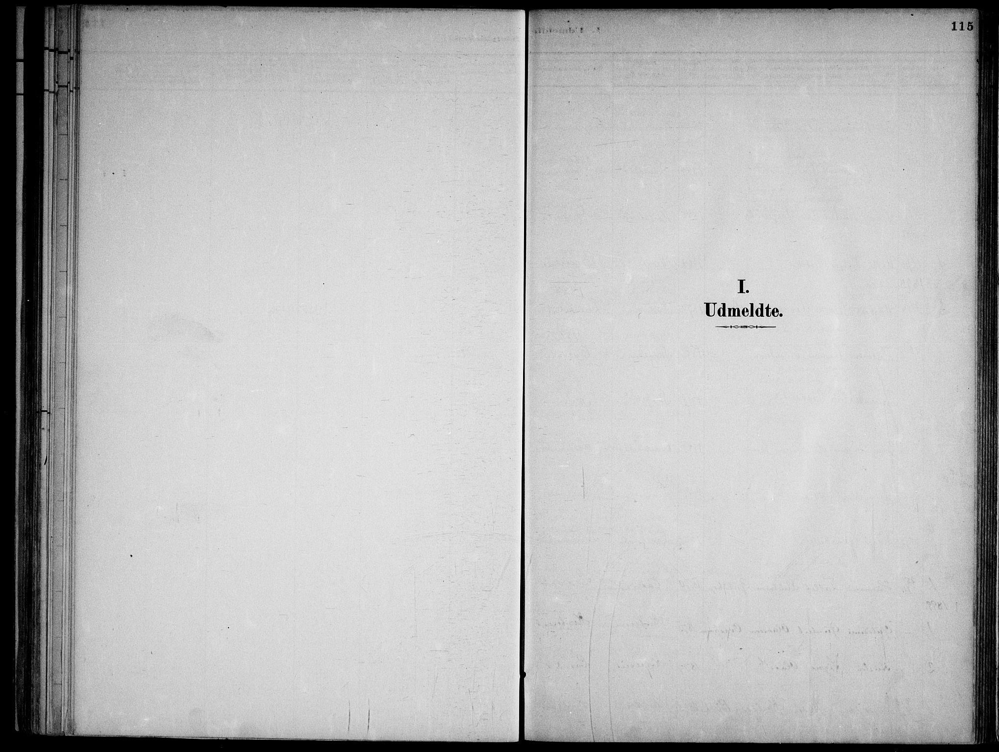 SAKO, Lårdal kirkebøker, F/Fa/L0007: Ministerialbok nr. I 7, 1887-1906, s. 115