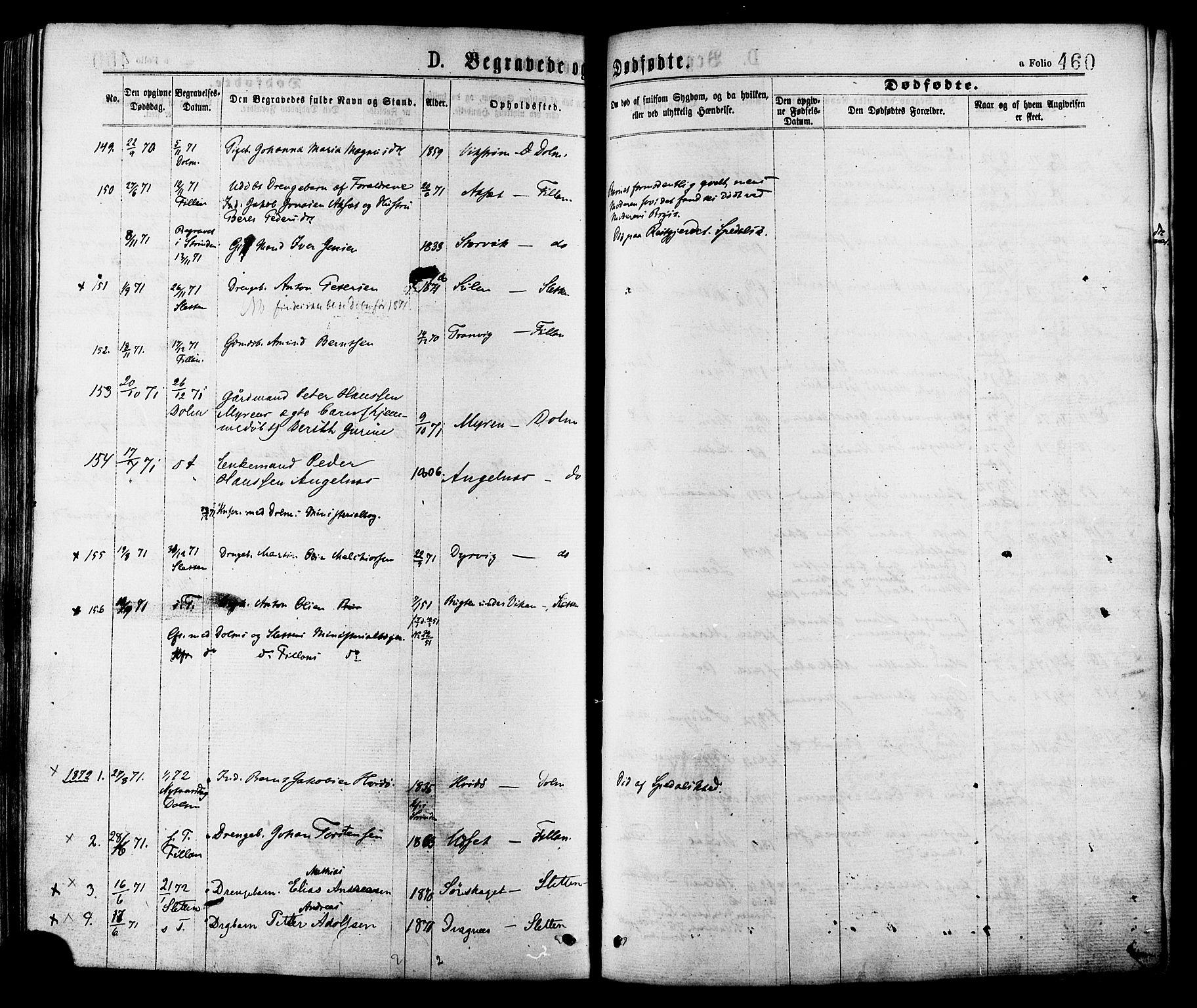 SAT, Ministerialprotokoller, klokkerbøker og fødselsregistre - Sør-Trøndelag, 634/L0532: Ministerialbok nr. 634A08, 1871-1881, s. 460