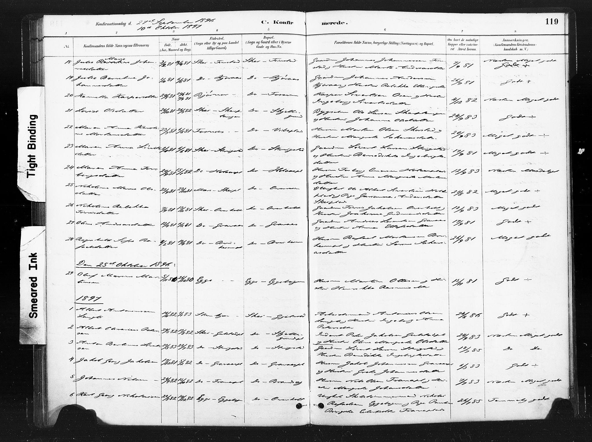 SAT, Ministerialprotokoller, klokkerbøker og fødselsregistre - Nord-Trøndelag, 736/L0361: Ministerialbok nr. 736A01, 1884-1906, s. 119