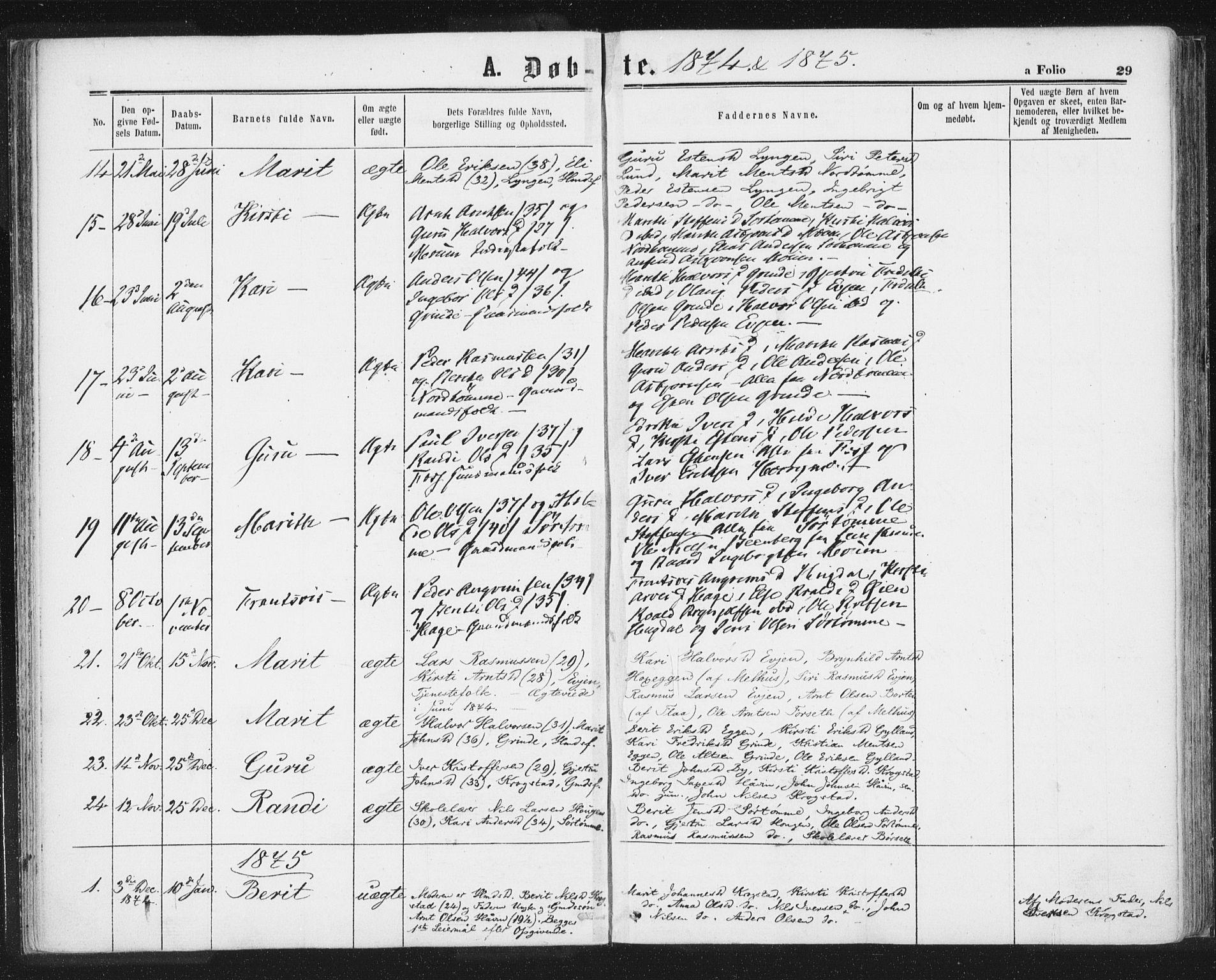 SAT, Ministerialprotokoller, klokkerbøker og fødselsregistre - Sør-Trøndelag, 692/L1104: Ministerialbok nr. 692A04, 1862-1878, s. 29