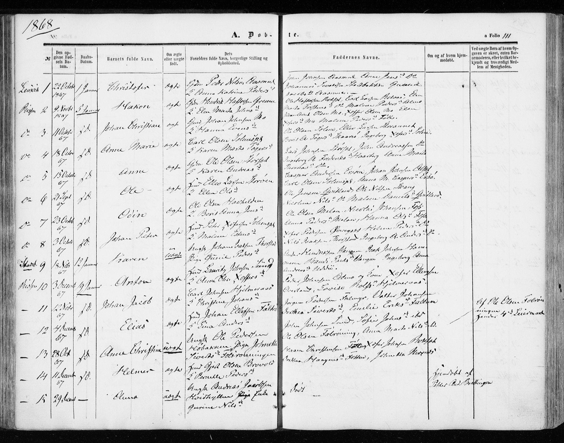 SAT, Ministerialprotokoller, klokkerbøker og fødselsregistre - Sør-Trøndelag, 646/L0612: Ministerialbok nr. 646A10, 1858-1869, s. 111