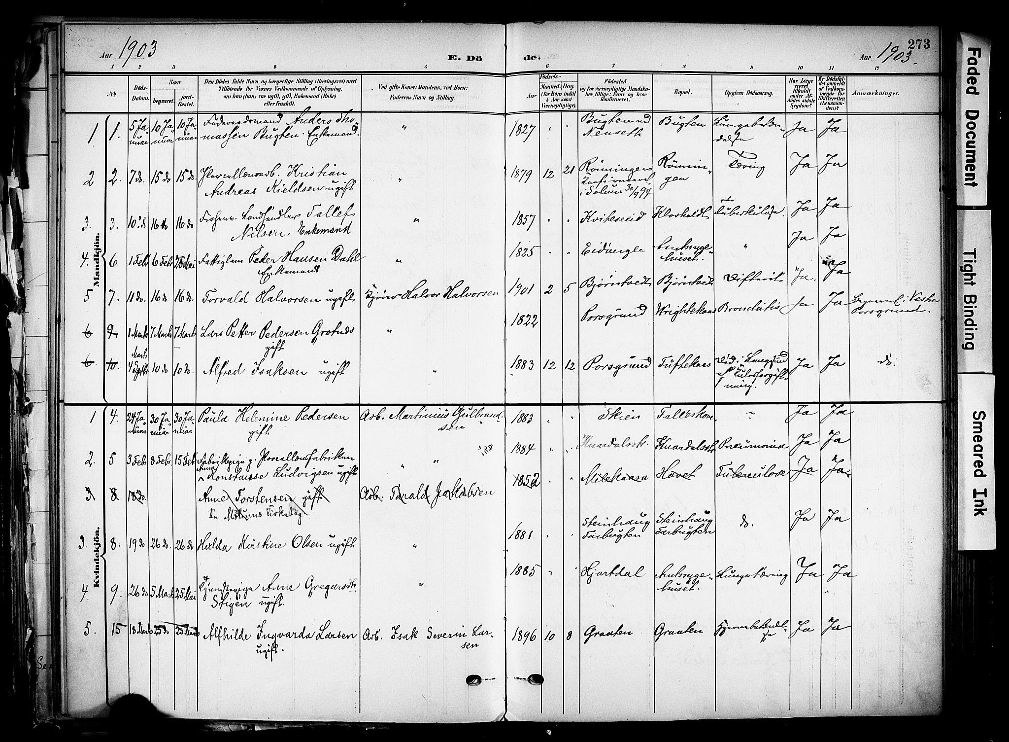 SAKO, Solum kirkebøker, F/Fa/L0011: Ministerialbok nr. I 11, 1898-1909, s. 273