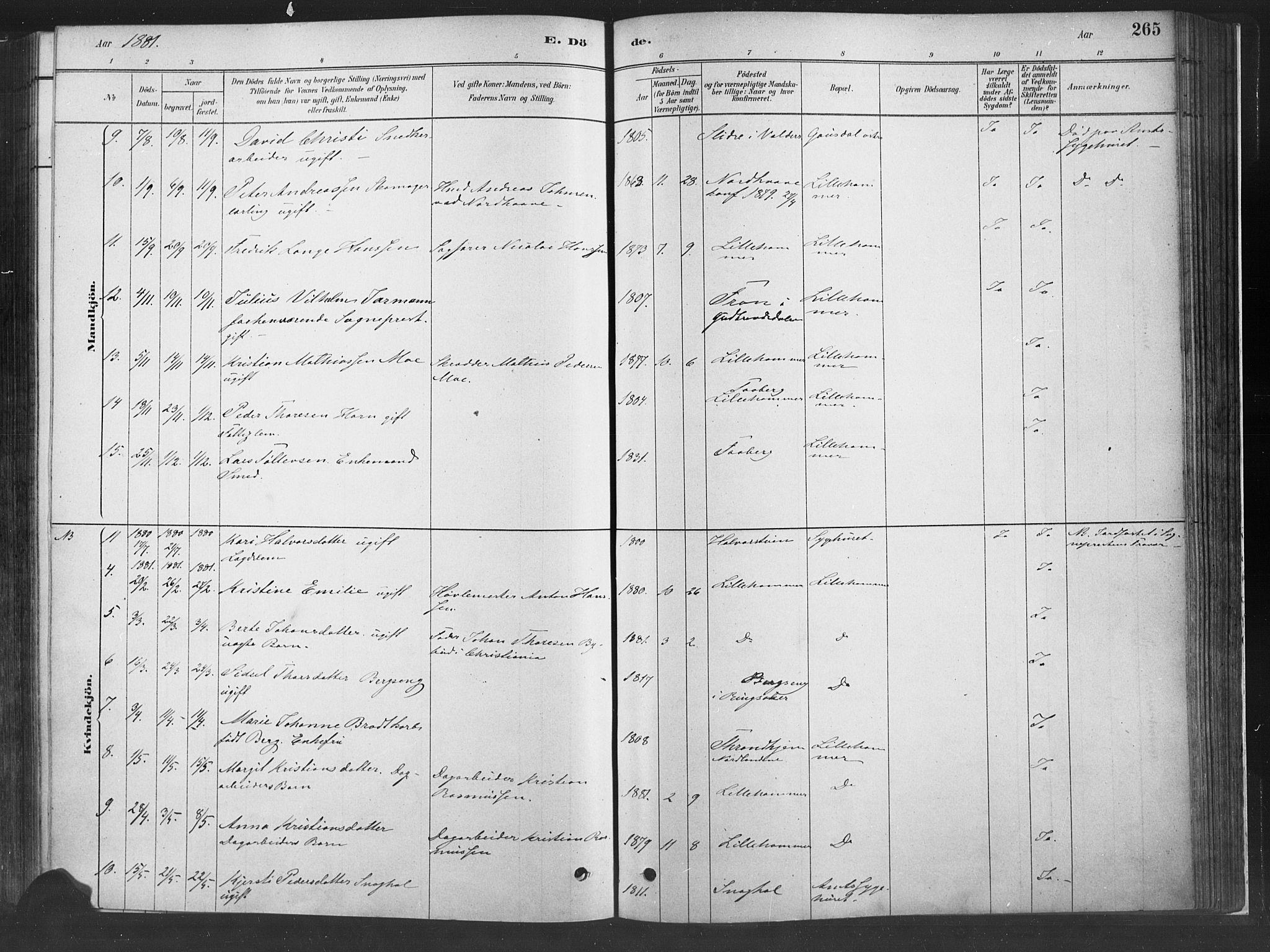 SAH, Fåberg prestekontor, H/Ha/Haa/L0010: Ministerialbok nr. 10, 1879-1900, s. 265