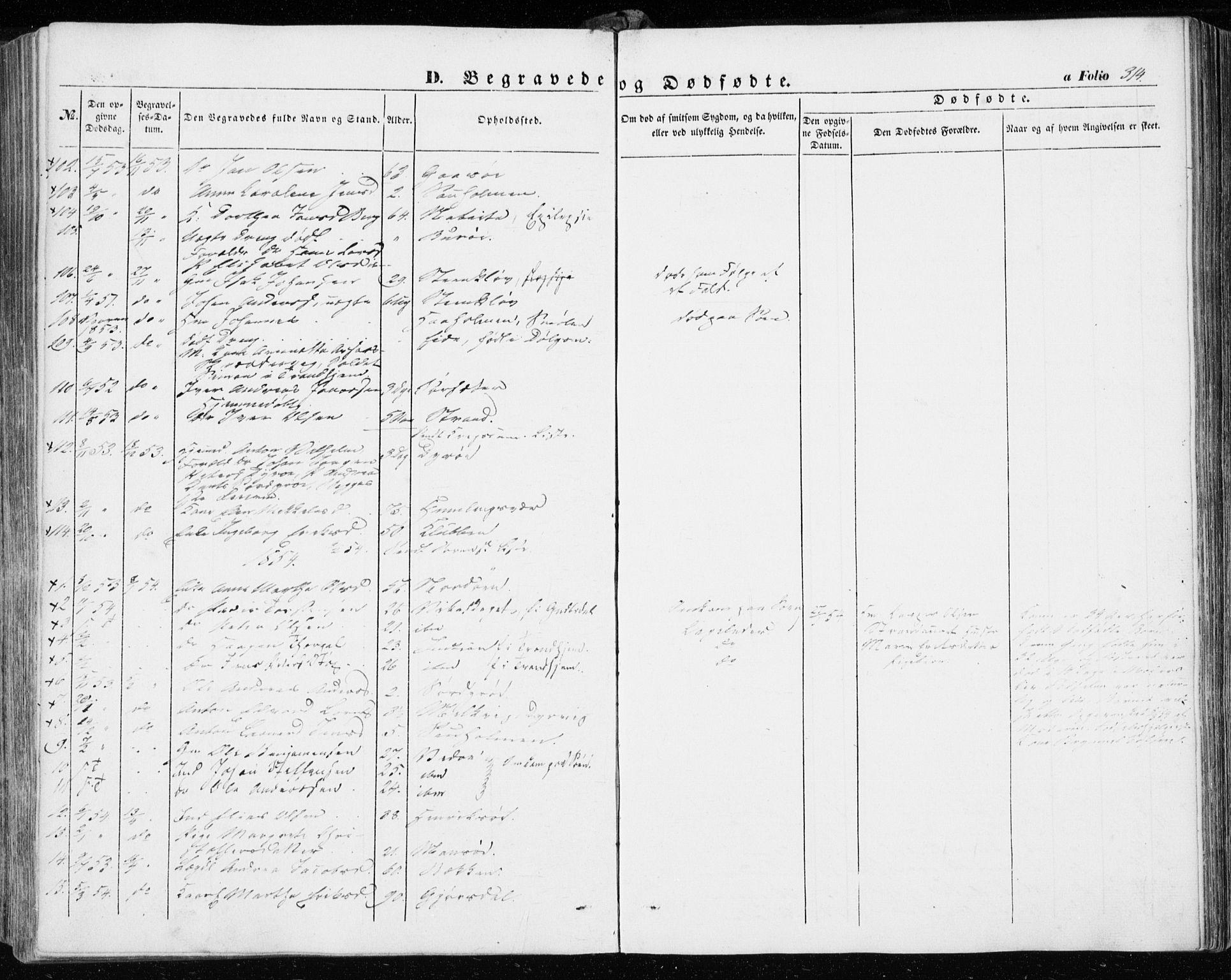 SAT, Ministerialprotokoller, klokkerbøker og fødselsregistre - Sør-Trøndelag, 634/L0530: Ministerialbok nr. 634A06, 1852-1860, s. 314