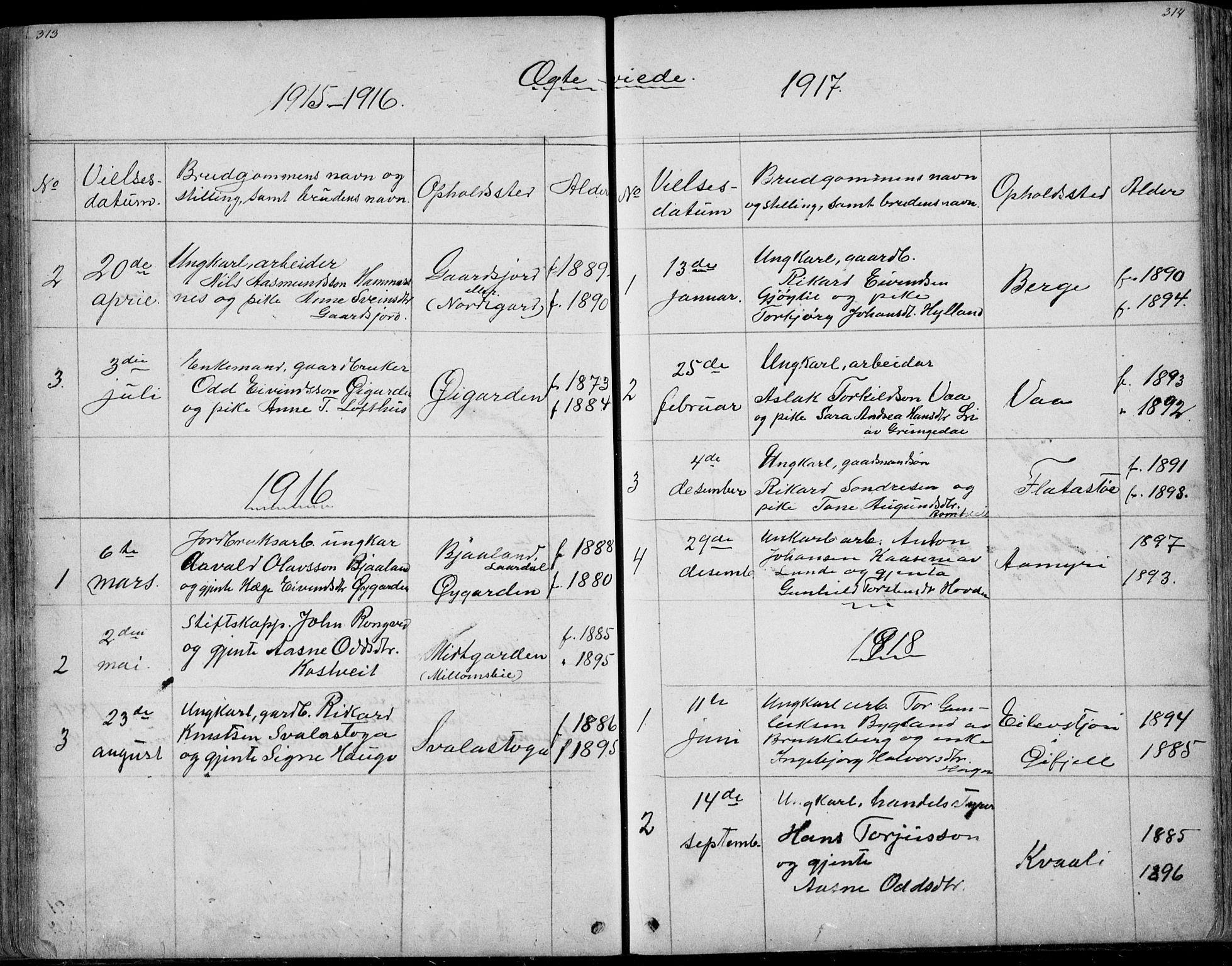 SAKO, Rauland kirkebøker, G/Ga/L0002: Klokkerbok nr. I 2, 1849-1935, s. 313-314
