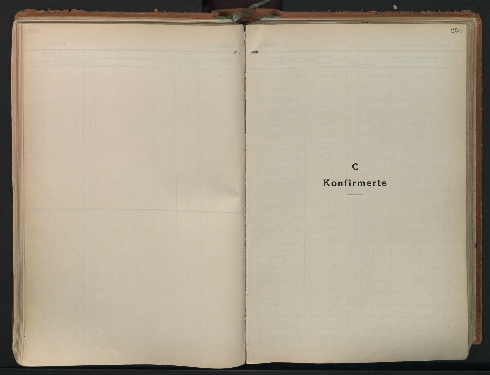 SAO, Moss prestekontor Kirkebøker, F/Fb/Fab/L0006: Ministerialbok nr. II 6, 1924-1932, s. 230