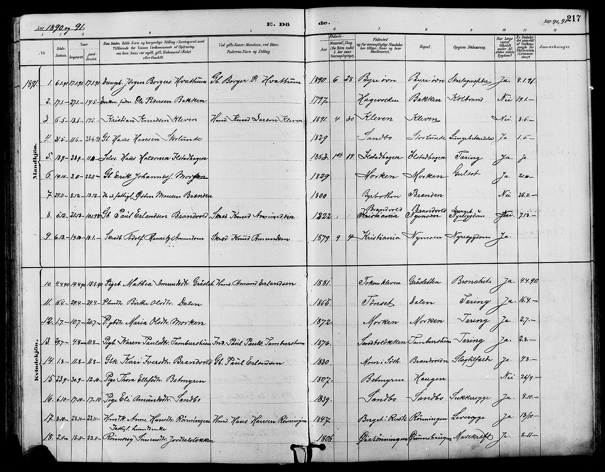 SAH, Nord-Fron prestekontor, Klokkerbok nr. 4, 1884-1914, s. 217