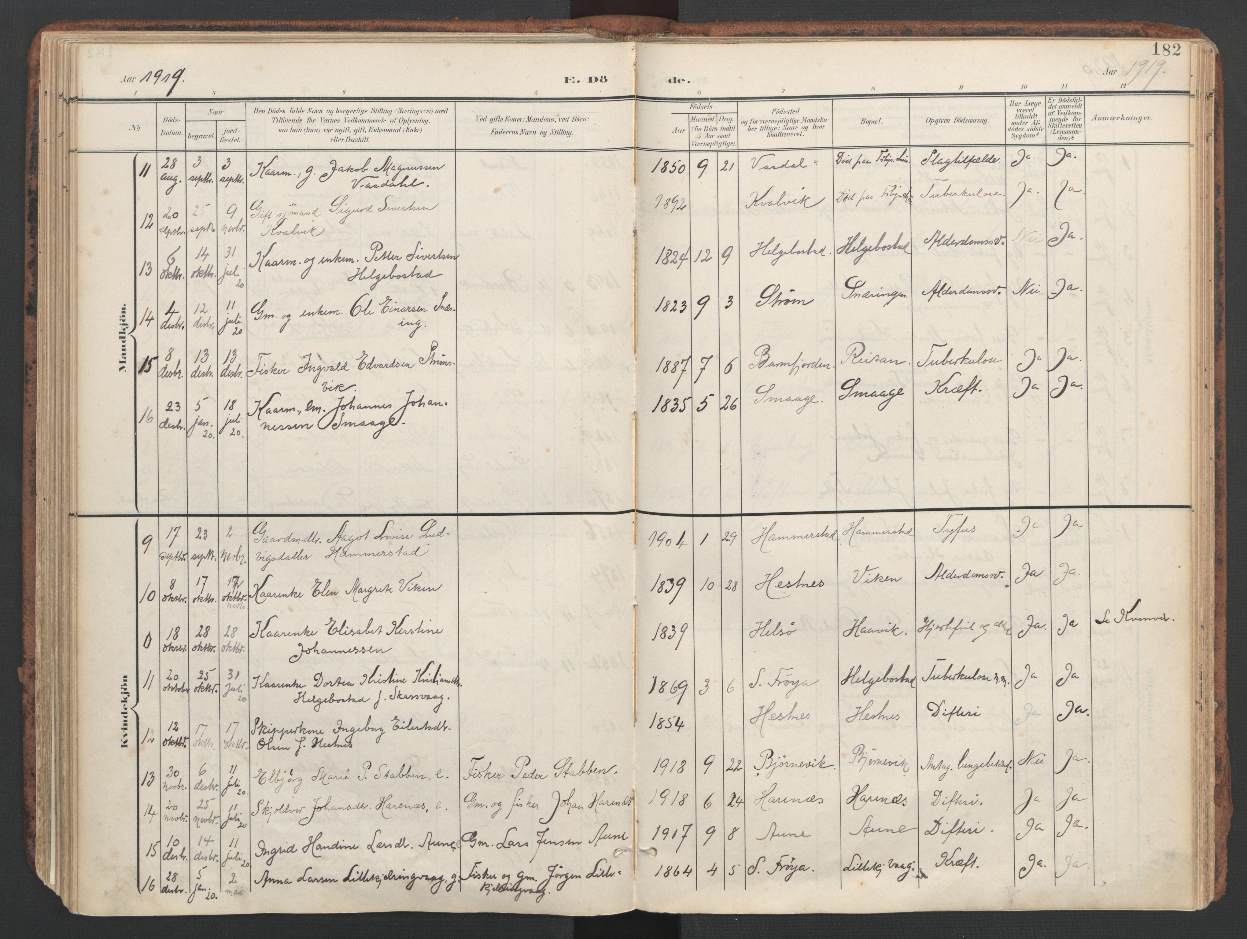 SAT, Ministerialprotokoller, klokkerbøker og fødselsregistre - Sør-Trøndelag, 634/L0537: Ministerialbok nr. 634A13, 1896-1922, s. 182