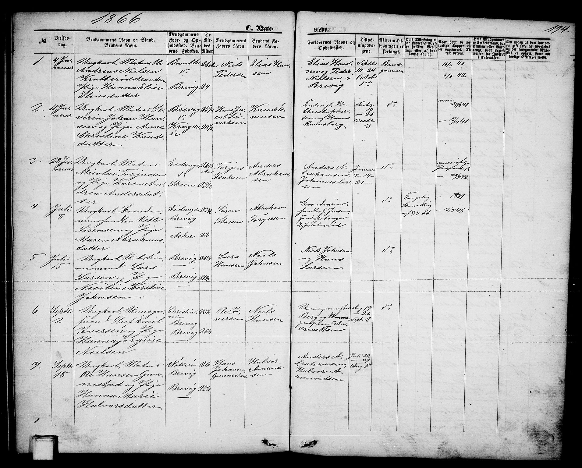 SAKO, Brevik kirkebøker, G/Ga/L0003: Klokkerbok nr. 3, 1866-1881, s. 194