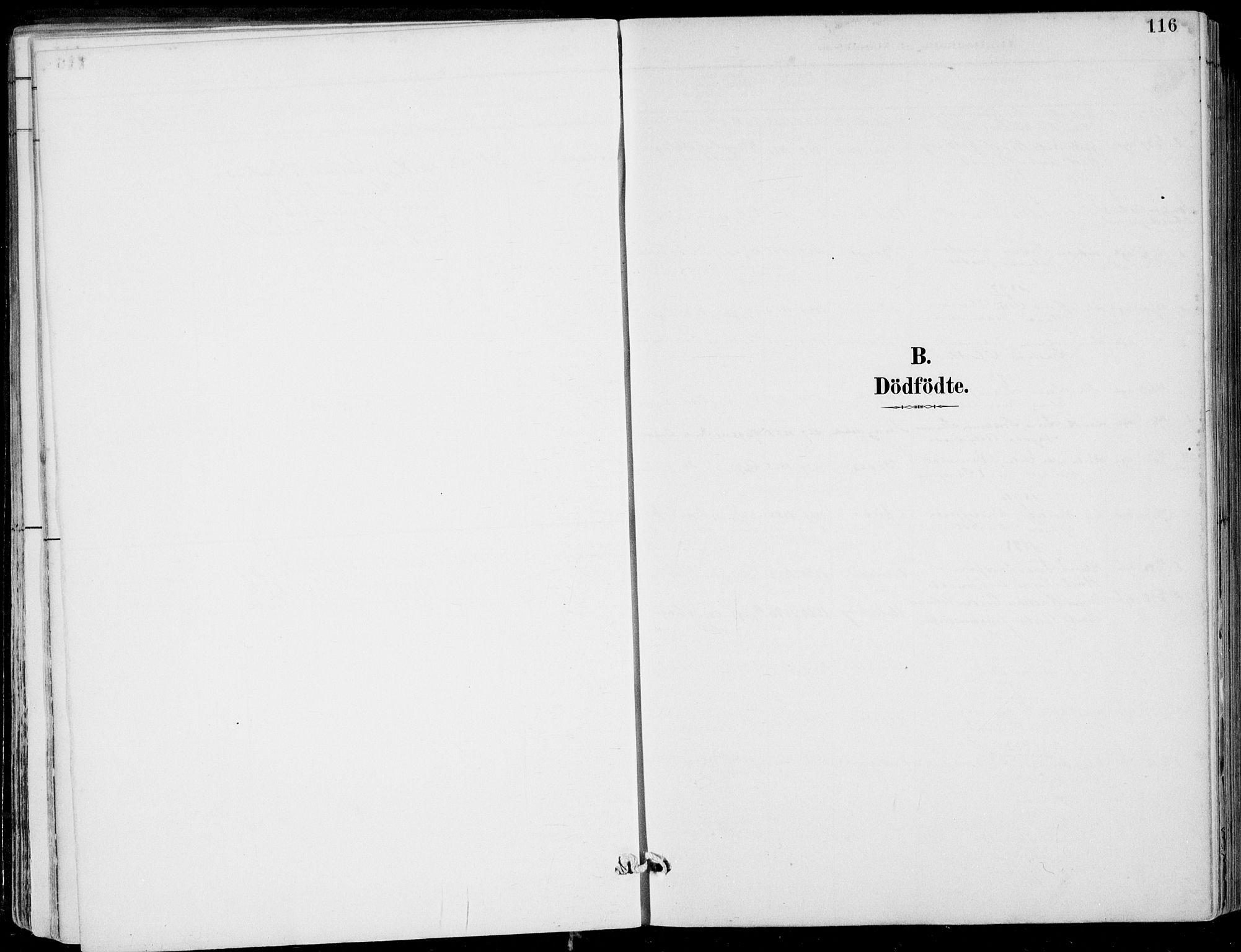 SAB, Strandebarm Sokneprestembete, H/Haa: Ministerialbok nr. E  1, 1886-1908, s. 116