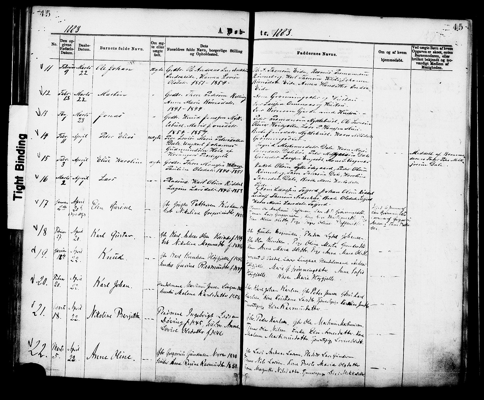 SAT, Ministerialprotokoller, klokkerbøker og fødselsregistre - Møre og Romsdal, 519/L0254: Ministerialbok nr. 519A13, 1868-1883, s. 45