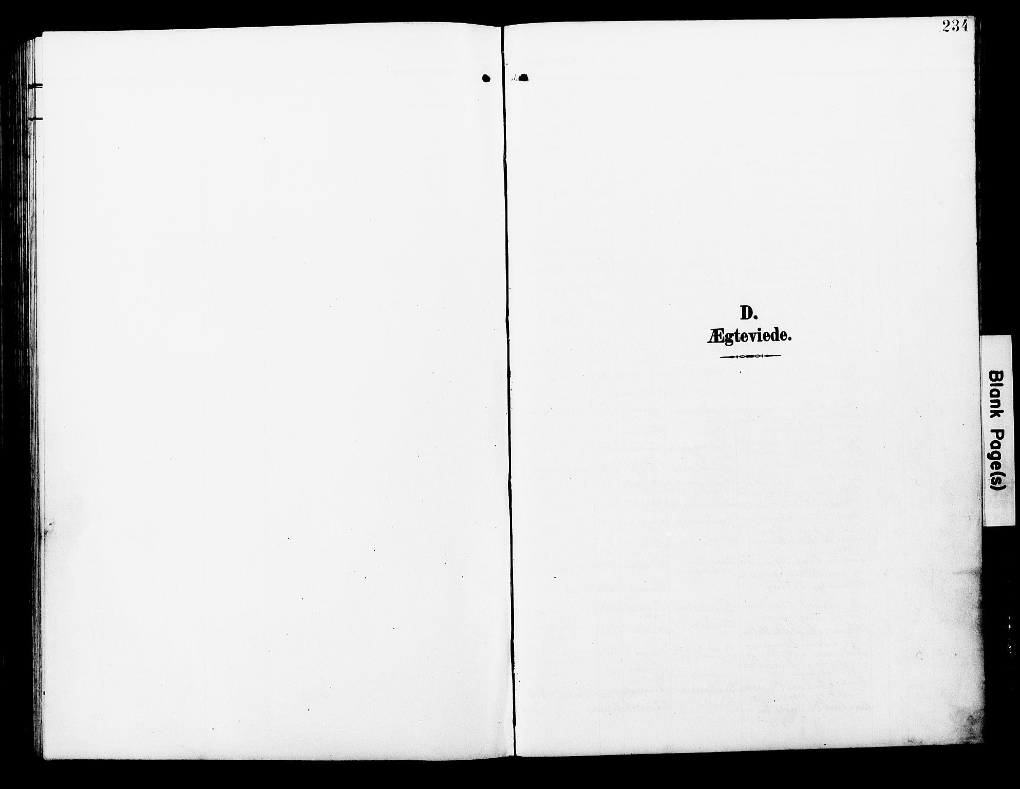 SAT, Ministerialprotokoller, klokkerbøker og fødselsregistre - Nord-Trøndelag, 723/L0258: Klokkerbok nr. 723C06, 1908-1927, s. 234