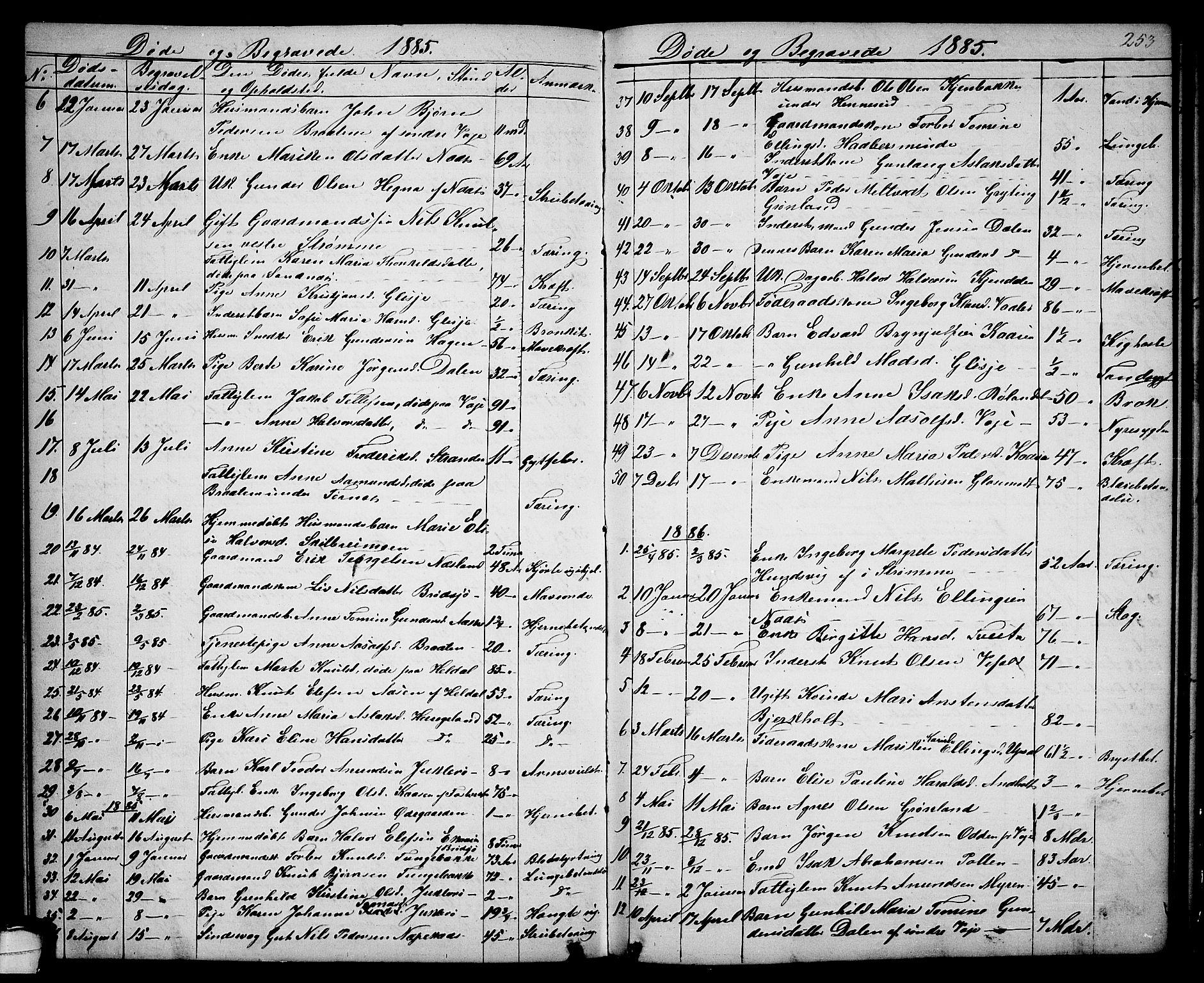 SAKO, Drangedal kirkebøker, G/Ga/L0002: Klokkerbok nr. I 2, 1856-1887, s. 253