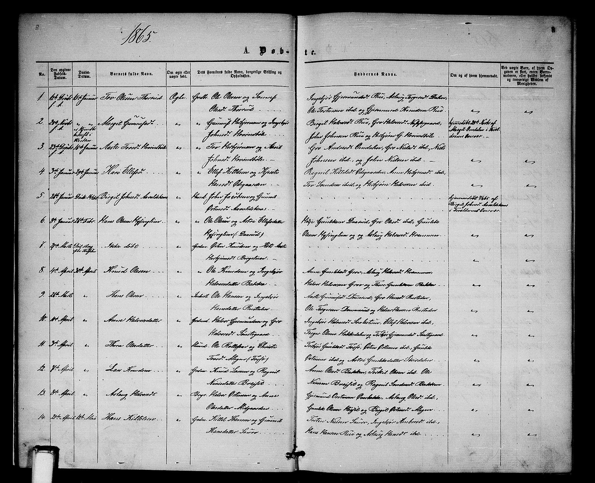 SAKO, Gransherad kirkebøker, G/Gb/L0002: Klokkerbok nr. II 2, 1860-1886, s. 8