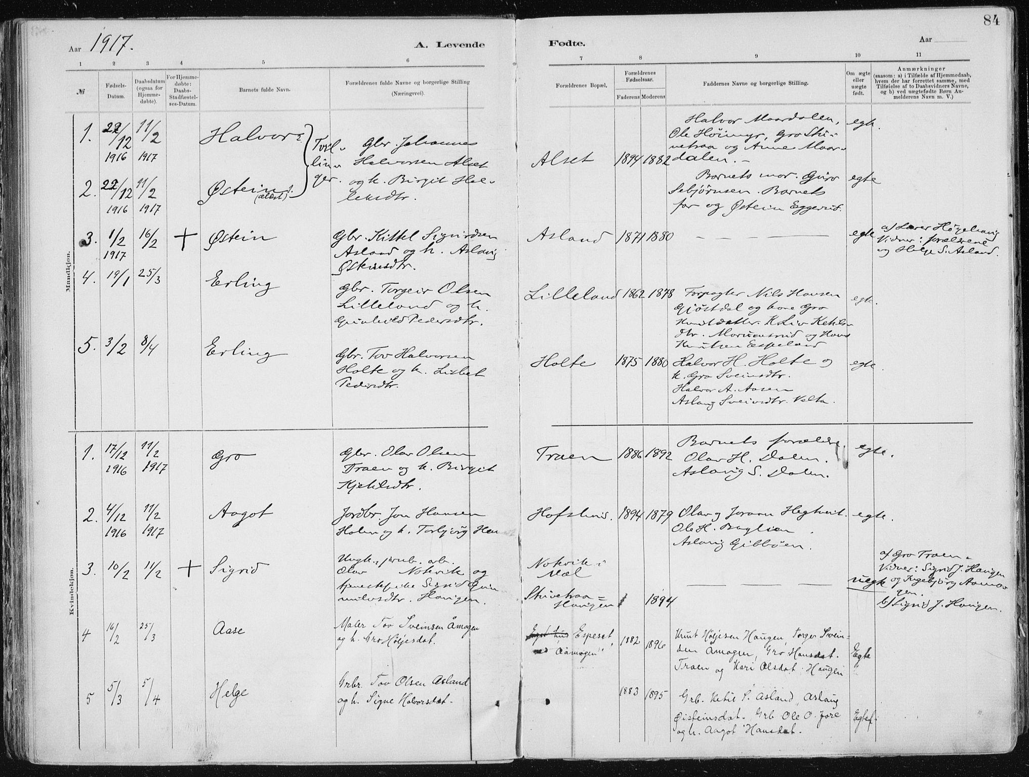 SAKO, Tinn kirkebøker, F/Fa/L0007: Ministerialbok nr. I 7, 1878-1922, s. 84