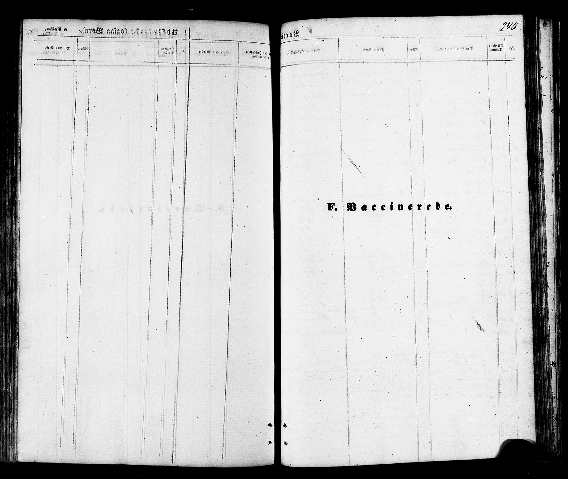 SATØ, Talvik sokneprestkontor, H/Ha/L0011kirke: Ministerialbok nr. 11, 1864-1877, s. 245