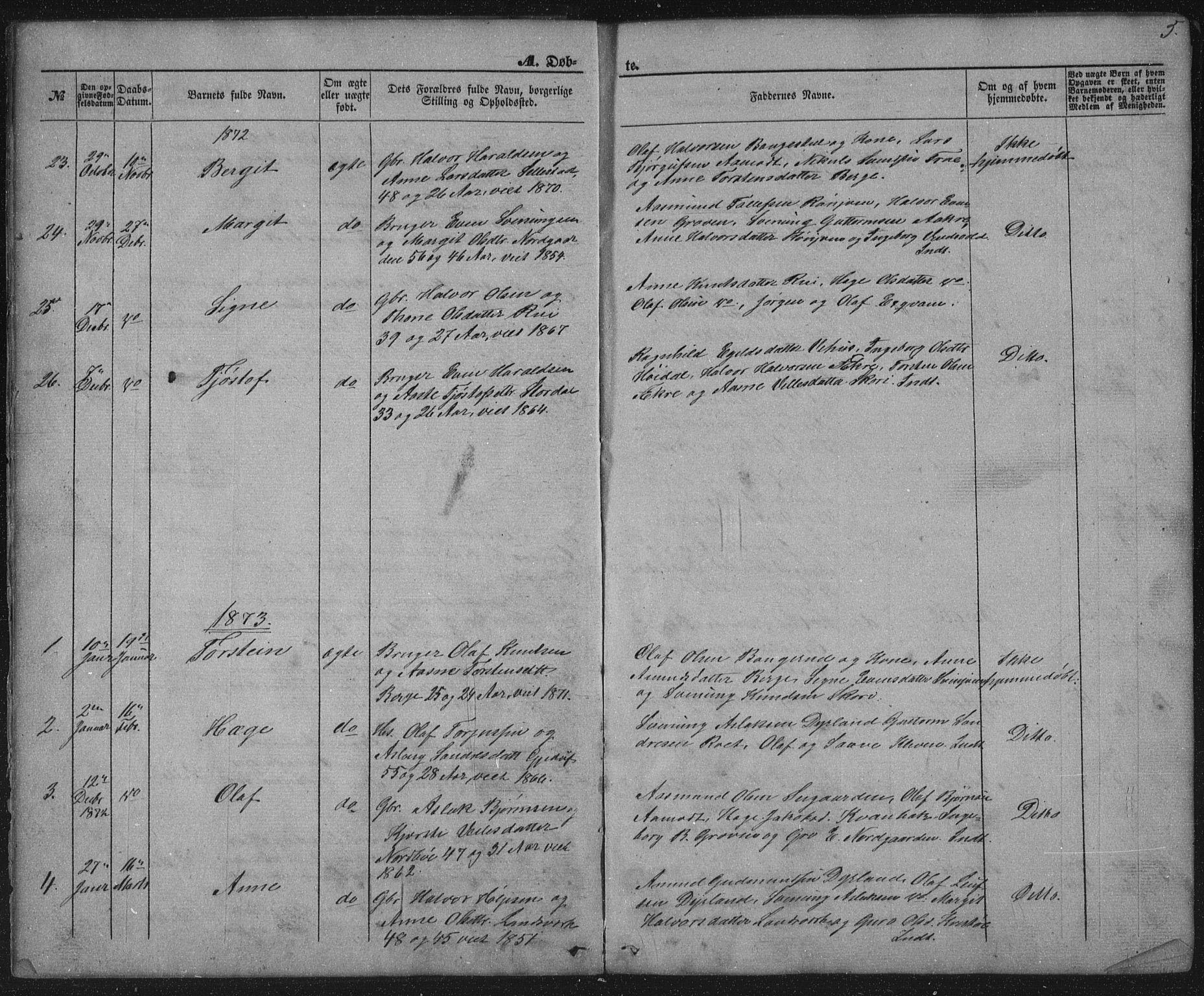 SAKO, Seljord kirkebøker, G/Gc/L0002: Klokkerbok nr. III 2, 1872-1886, s. 5