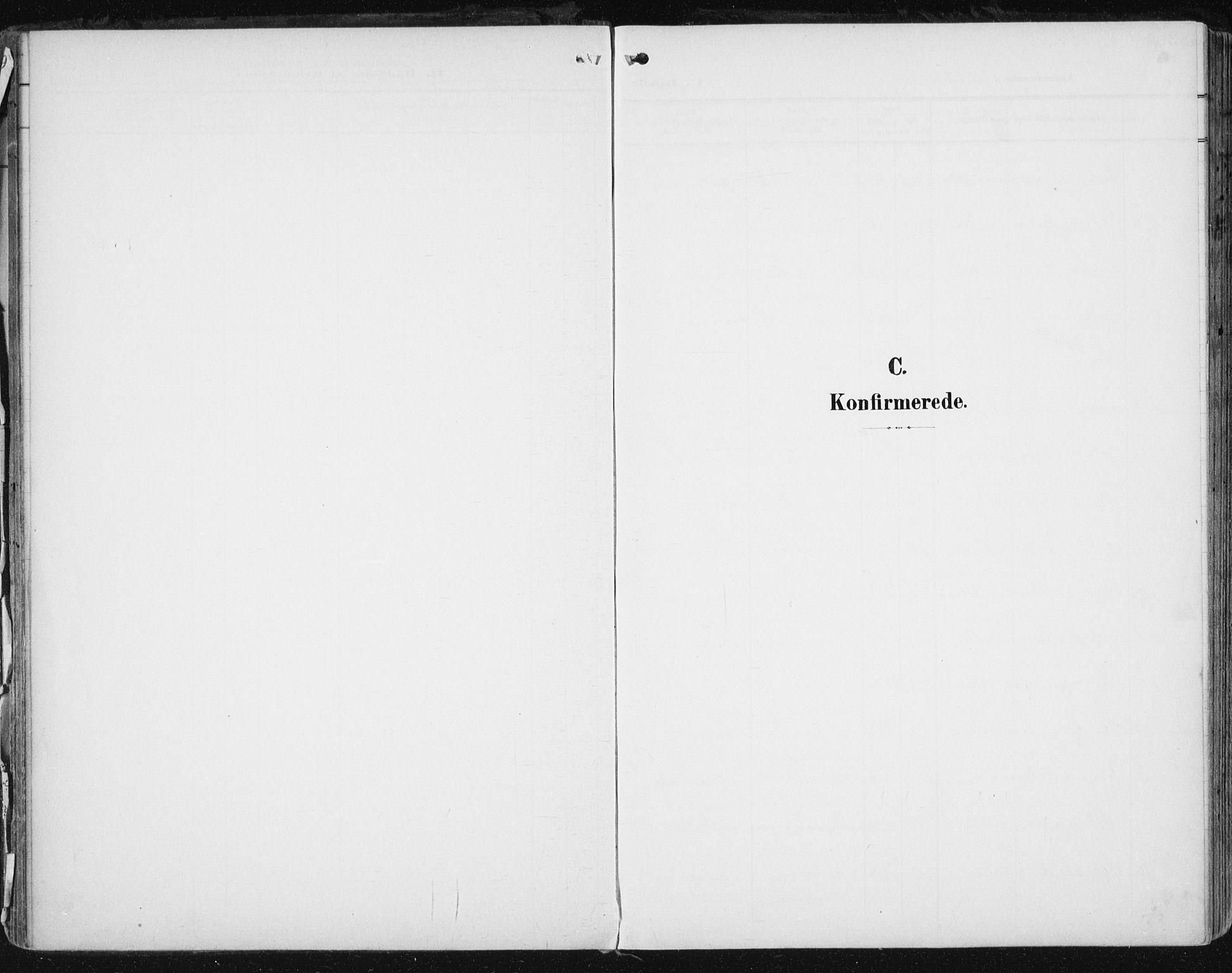 SAT, Ministerialprotokoller, klokkerbøker og fødselsregistre - Sør-Trøndelag, 646/L0616: Ministerialbok nr. 646A14, 1900-1918