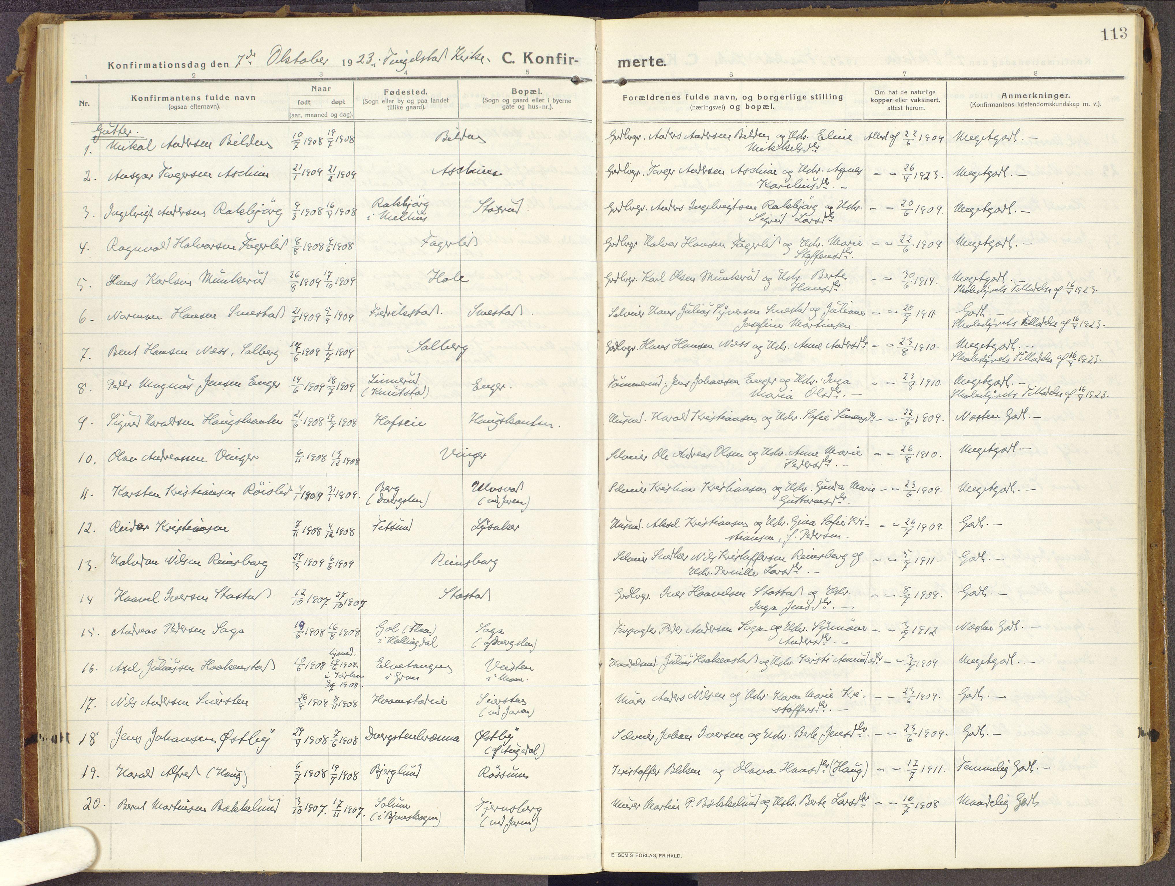 SAH, Brandbu prestekontor, Ministerialbok nr. 3, 1914-1928, s. 113