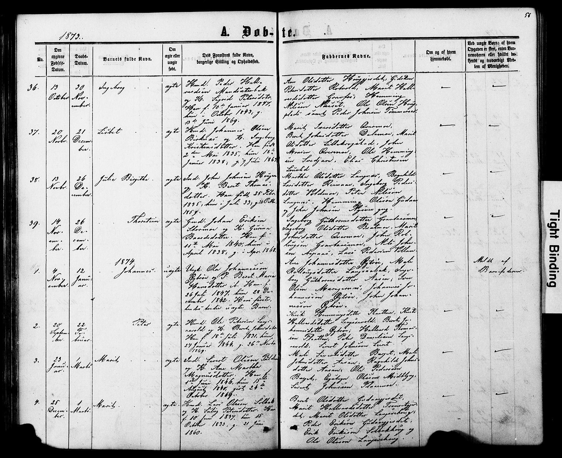SAT, Ministerialprotokoller, klokkerbøker og fødselsregistre - Nord-Trøndelag, 706/L0049: Klokkerbok nr. 706C01, 1864-1895, s. 56