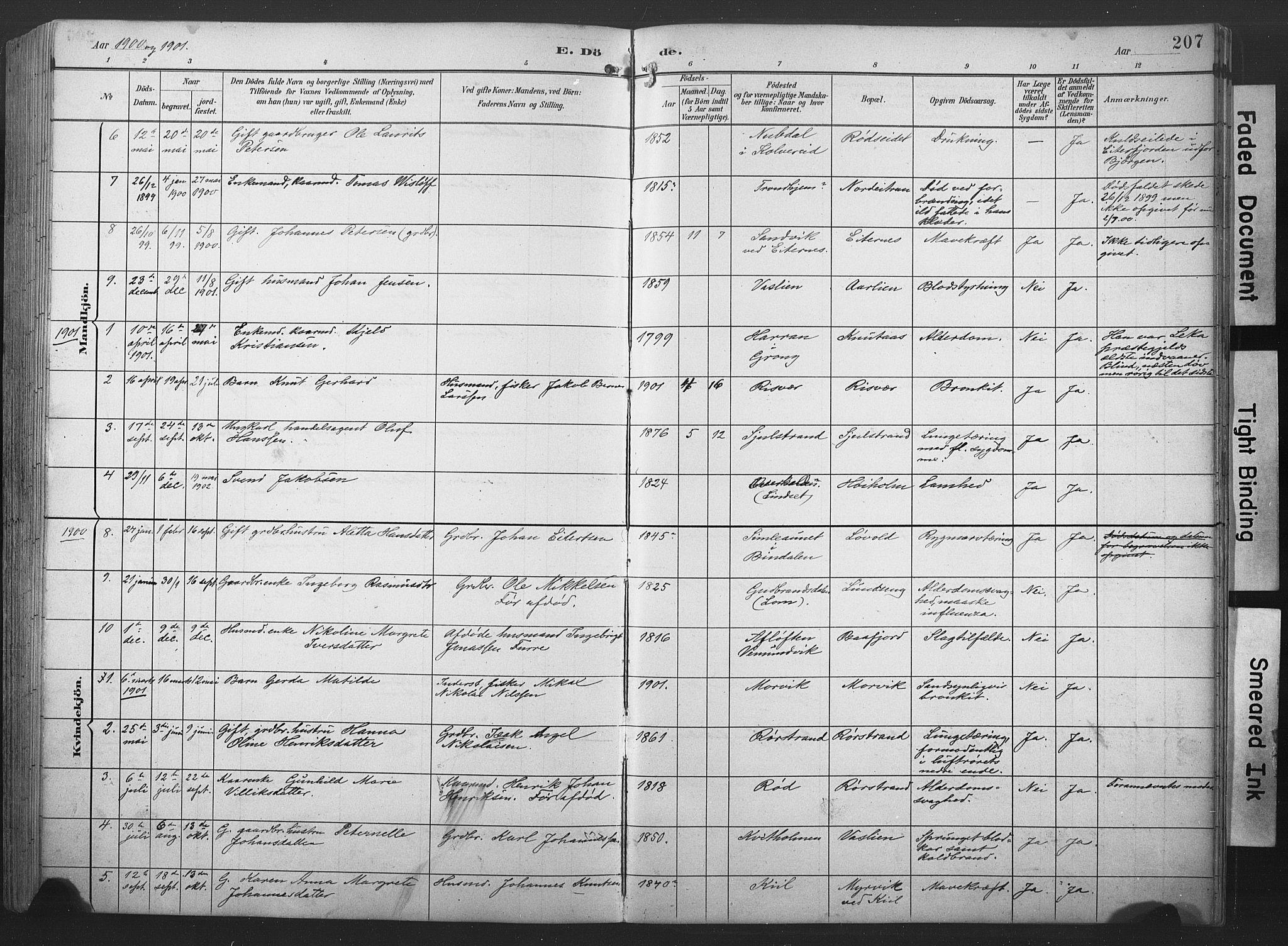 SAT, Ministerialprotokoller, klokkerbøker og fødselsregistre - Nord-Trøndelag, 789/L0706: Klokkerbok nr. 789C01, 1888-1931, s. 207