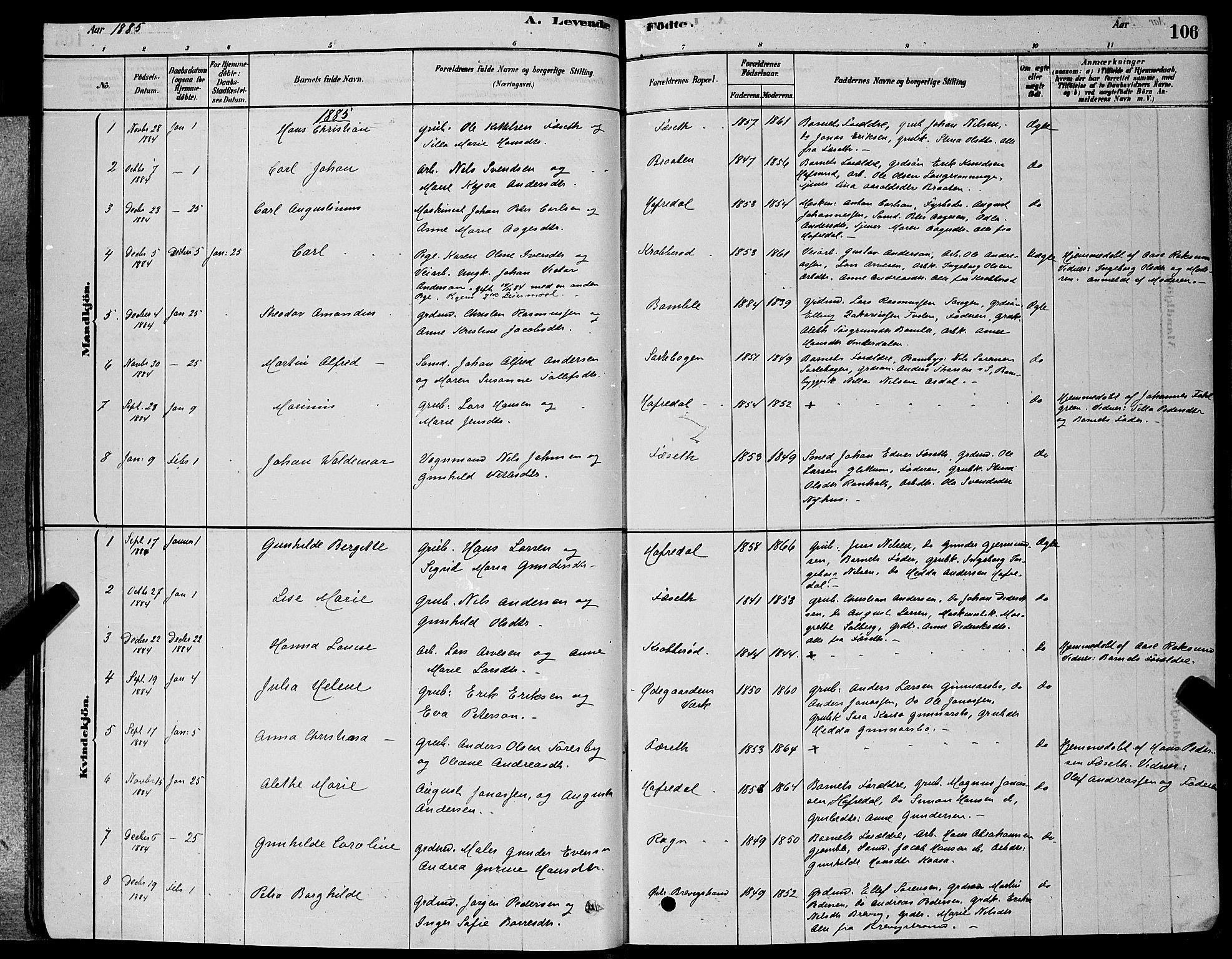 SAKO, Bamble kirkebøker, G/Ga/L0008: Klokkerbok nr. I 8, 1878-1888, s. 106