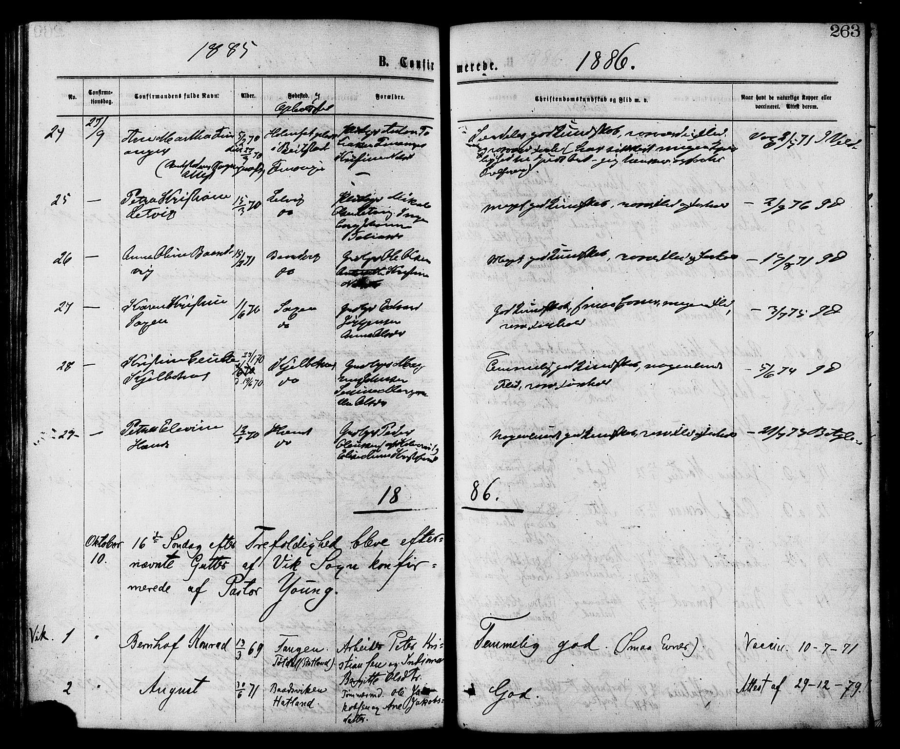 SAT, Ministerialprotokoller, klokkerbøker og fødselsregistre - Nord-Trøndelag, 773/L0616: Ministerialbok nr. 773A07, 1870-1887, s. 263