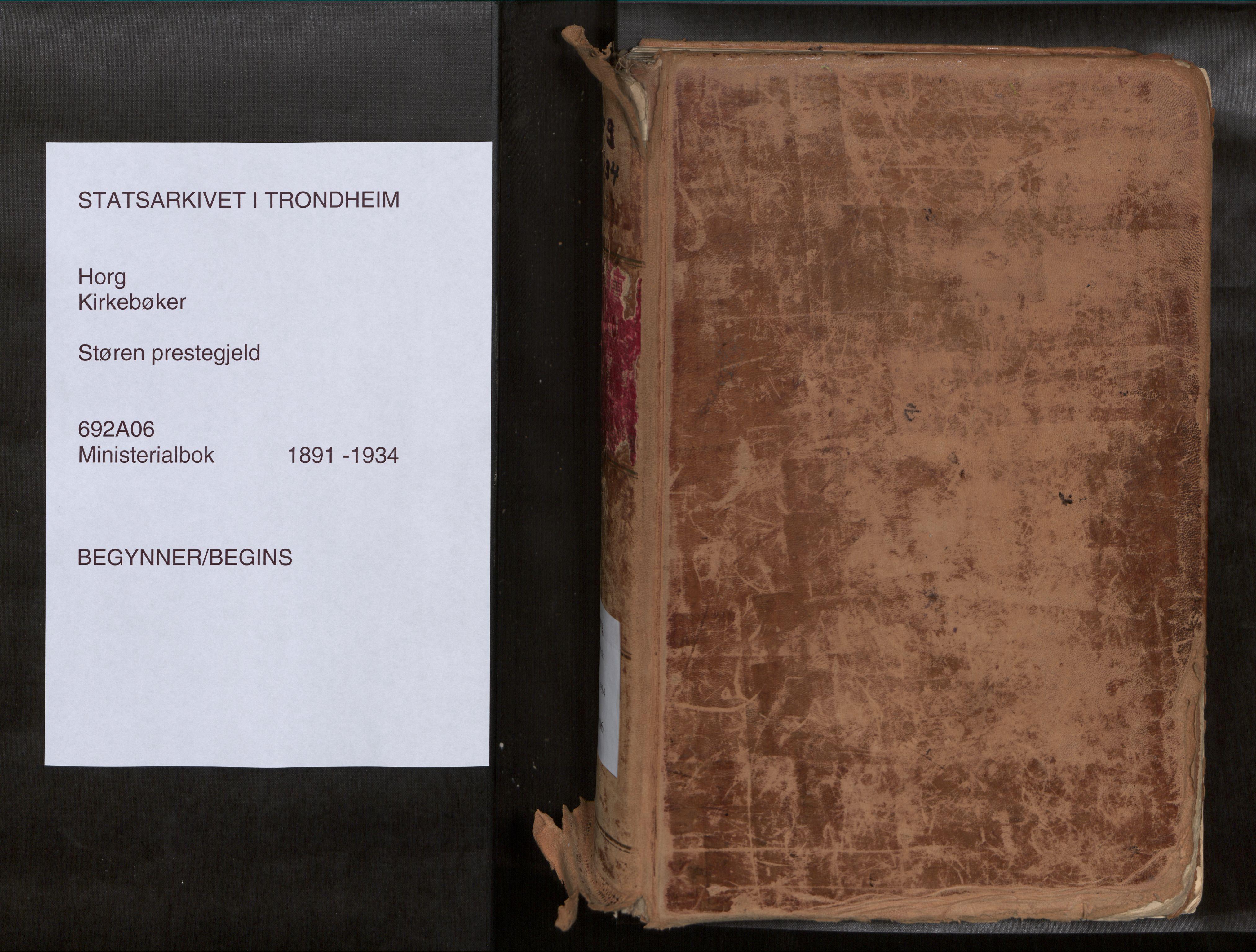 SAT, Ministerialprotokoller, klokkerbøker og fødselsregistre - Sør-Trøndelag, 692/L1105b: Ministerialbok nr. 692A06, 1891-1934