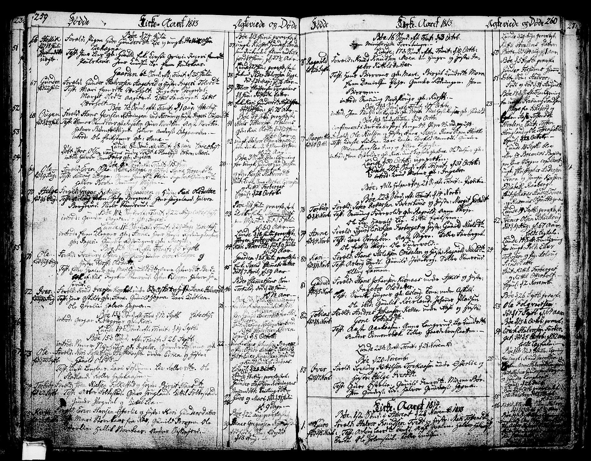 SAKO, Bø kirkebøker, F/Fa/L0005: Ministerialbok nr. 5, 1785-1815, s. 259-260