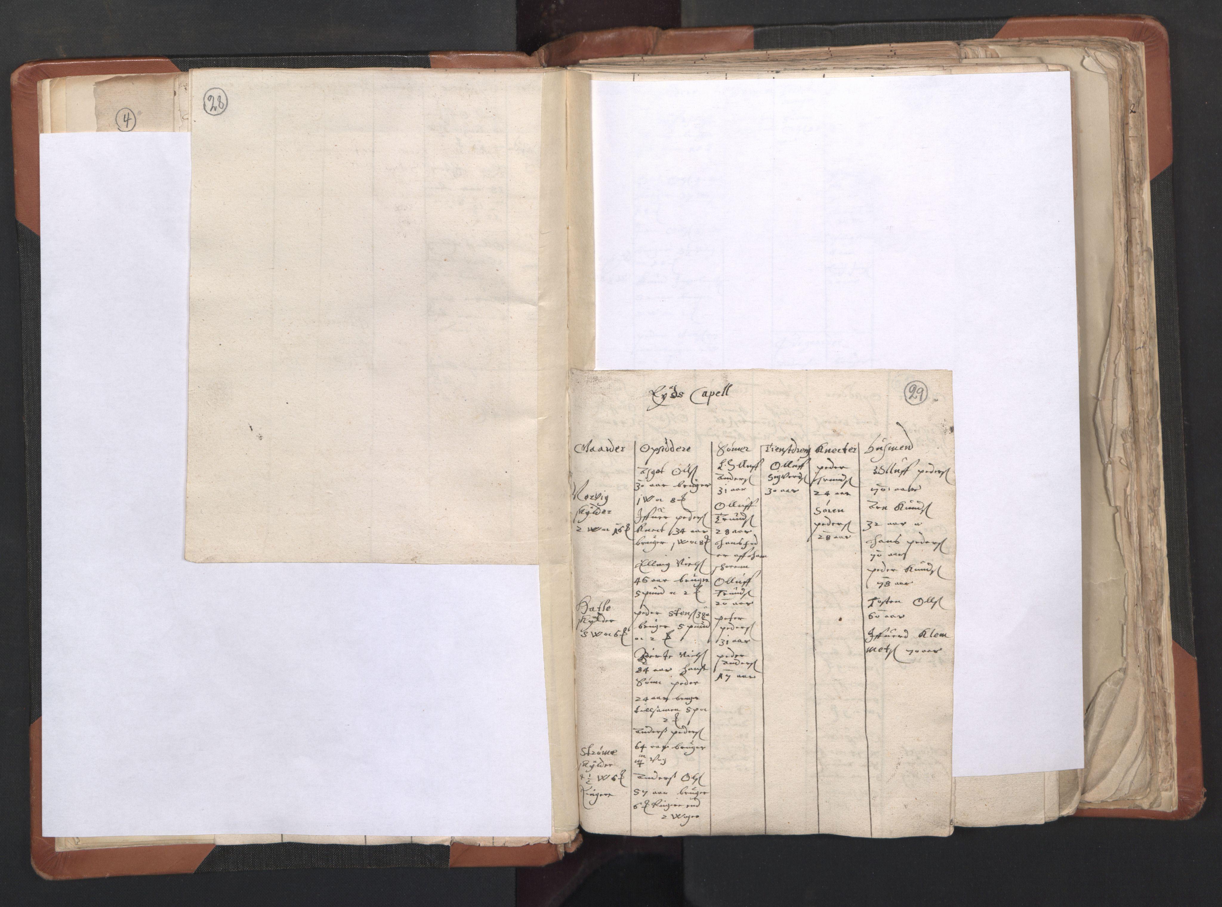 RA, Sogneprestenes manntall 1664-1666, nr. 27: Romsdal prosti, 1664-1666, s. 28-29
