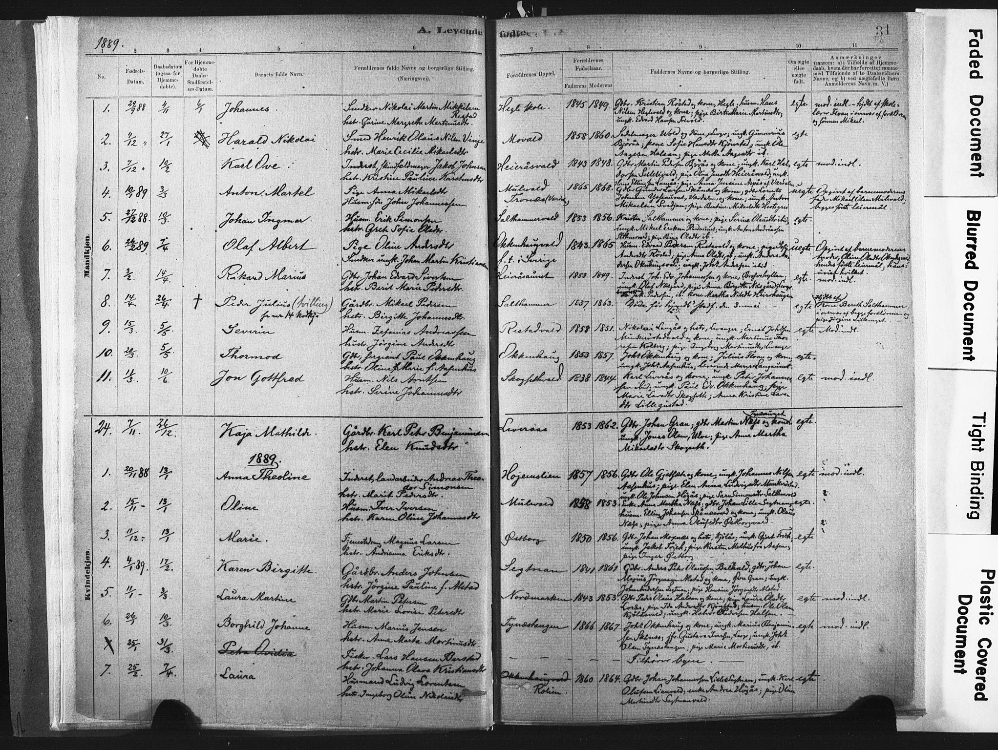 SAT, Ministerialprotokoller, klokkerbøker og fødselsregistre - Nord-Trøndelag, 721/L0207: Ministerialbok nr. 721A02, 1880-1911, s. 31