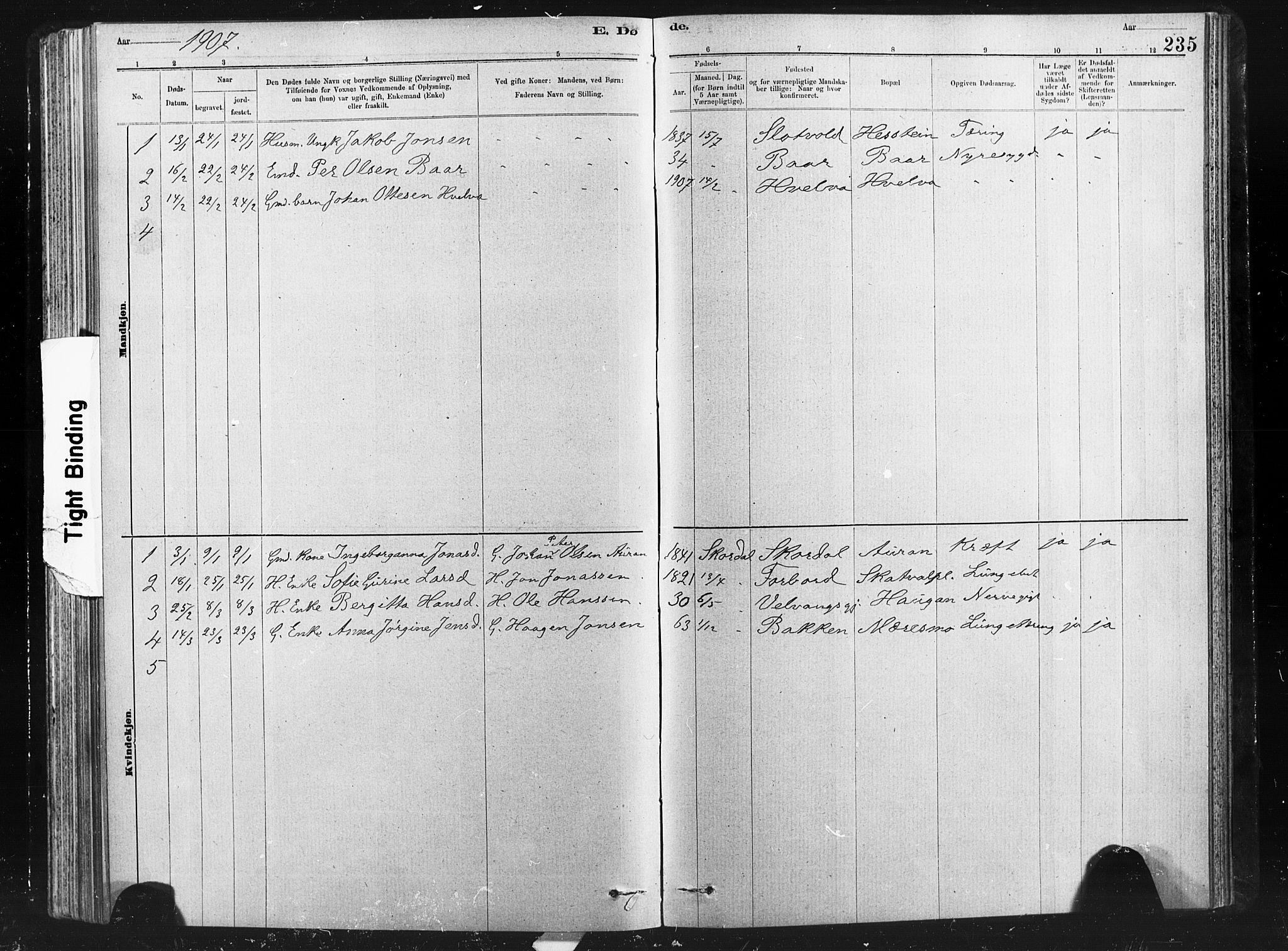 SAT, Ministerialprotokoller, klokkerbøker og fødselsregistre - Nord-Trøndelag, 712/L0103: Klokkerbok nr. 712C01, 1878-1917, s. 235