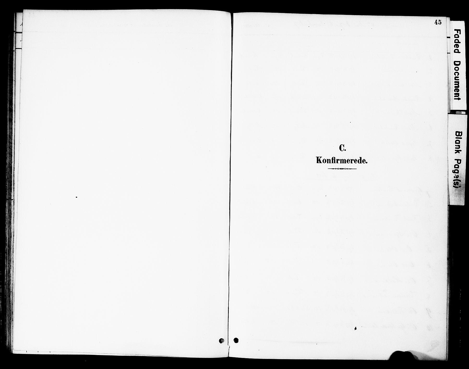 SAH, Øystre Slidre prestekontor, Ministerialbok nr. 3, 1887-1910, s. 45