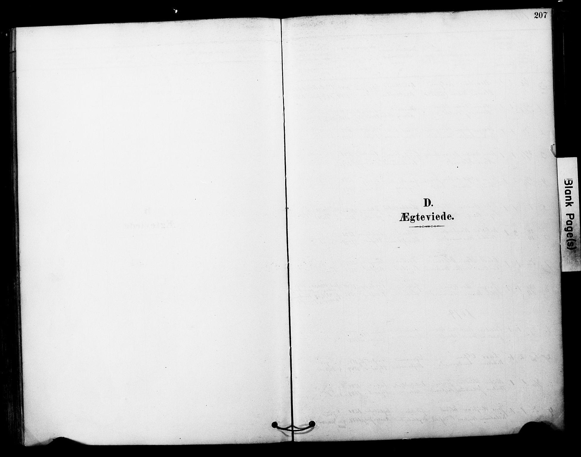 SATØ, Tranøy sokneprestkontor, I/Ia/Iaa/L0011kirke: Ministerialbok nr. 11, 1878-1904, s. 207