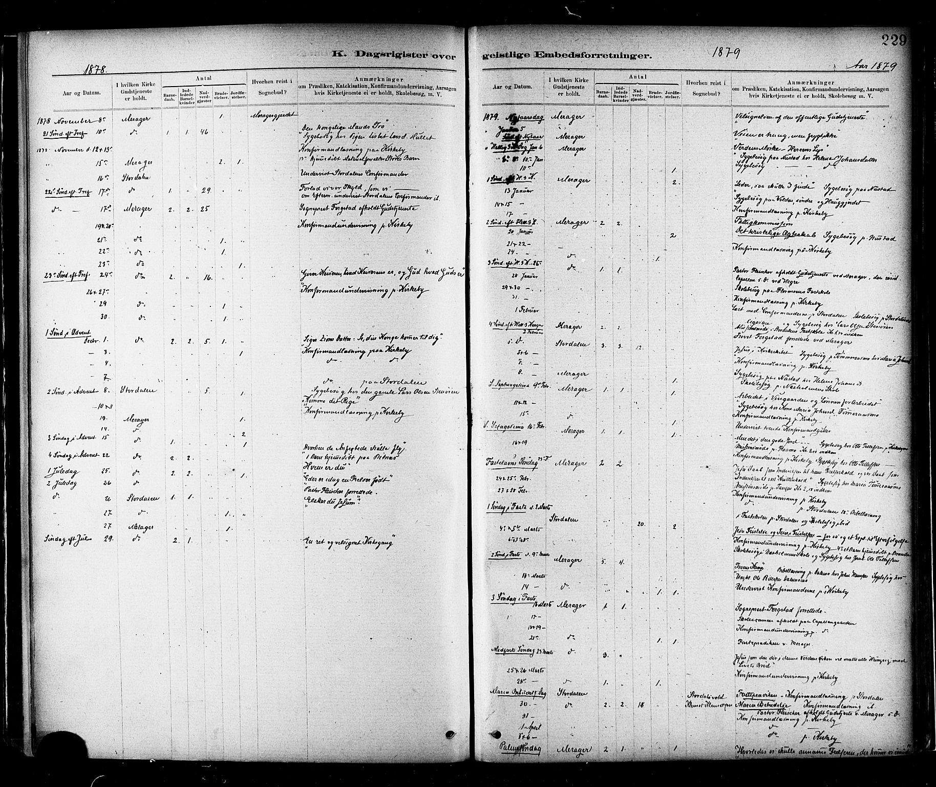 SAT, Ministerialprotokoller, klokkerbøker og fødselsregistre - Nord-Trøndelag, 706/L0047: Ministerialbok nr. 706A03, 1878-1892, s. 229