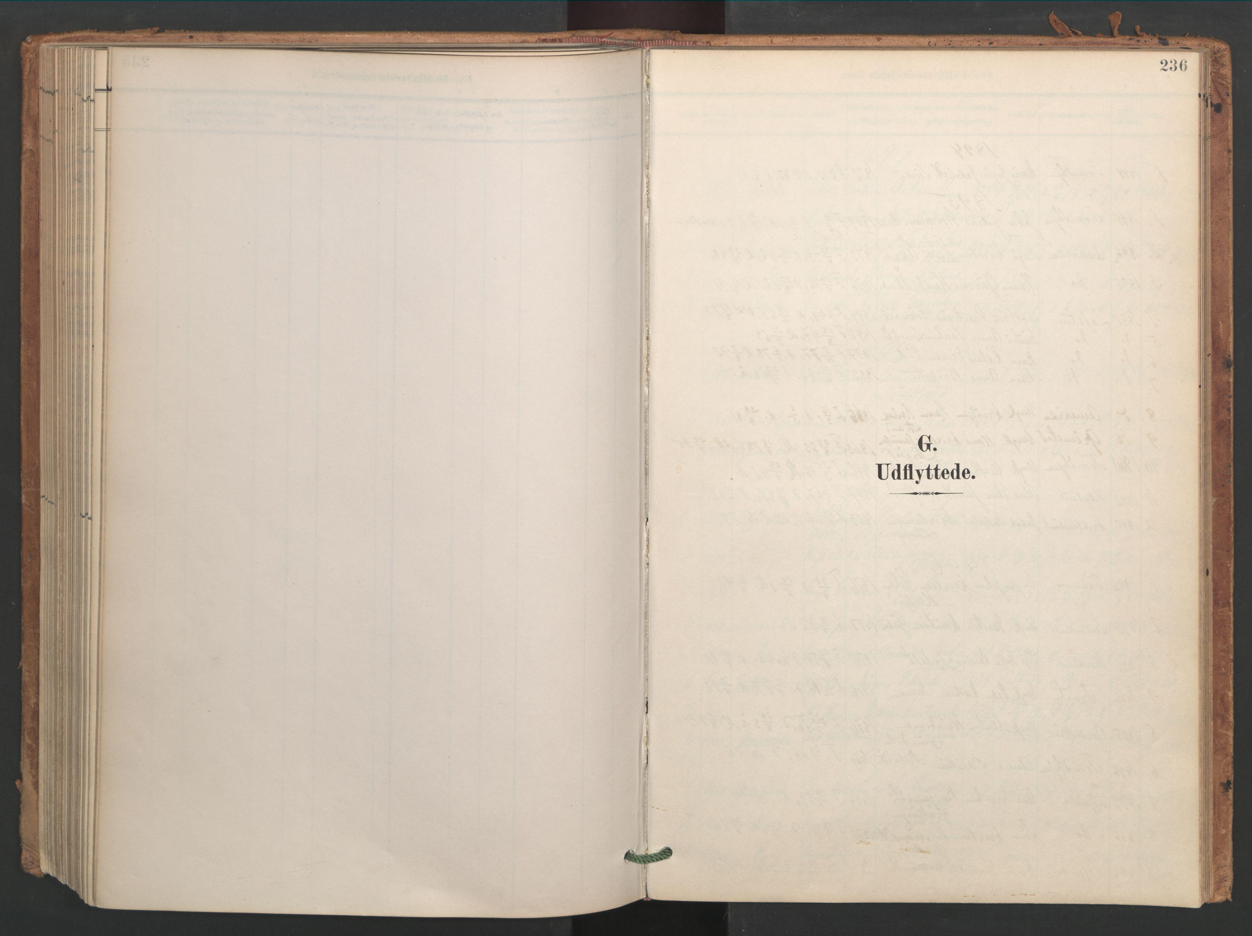SAT, Ministerialprotokoller, klokkerbøker og fødselsregistre - Sør-Trøndelag, 656/L0693: Ministerialbok nr. 656A02, 1894-1913, s. 236