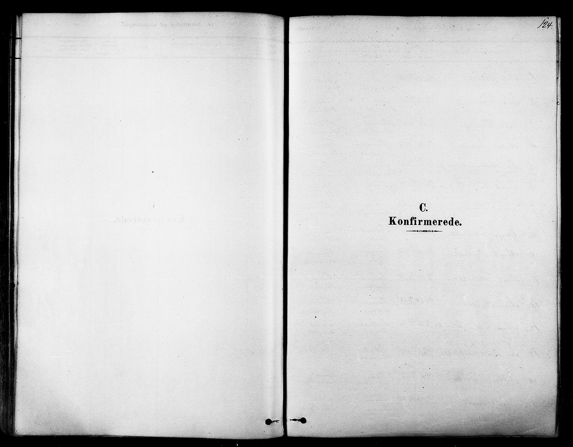 SATØ, Tana sokneprestkontor, H/Ha/L0004kirke: Ministerialbok nr. 4, 1878-1891, s. 124