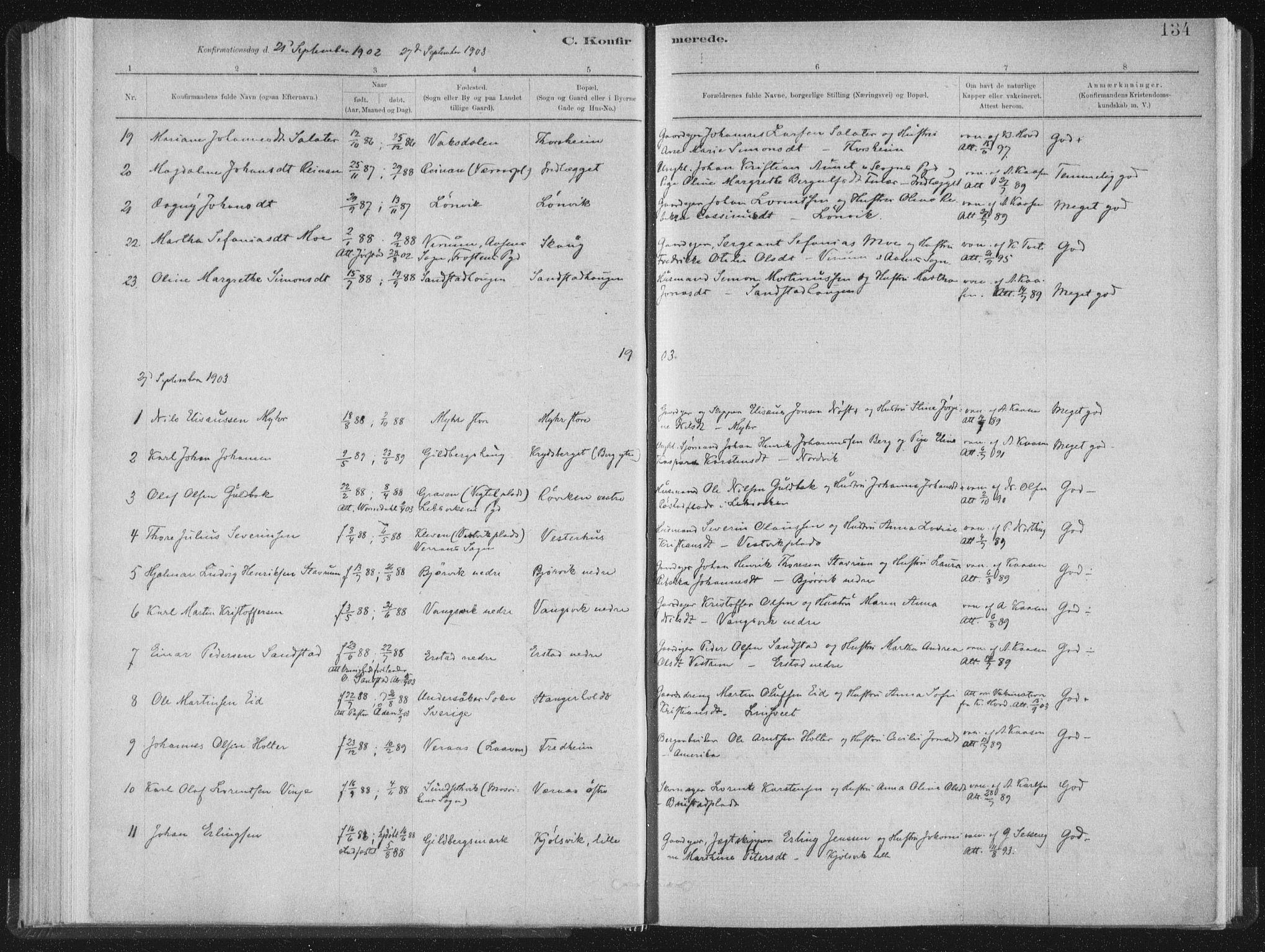 SAT, Ministerialprotokoller, klokkerbøker og fødselsregistre - Nord-Trøndelag, 722/L0220: Ministerialbok nr. 722A07, 1881-1908, s. 134