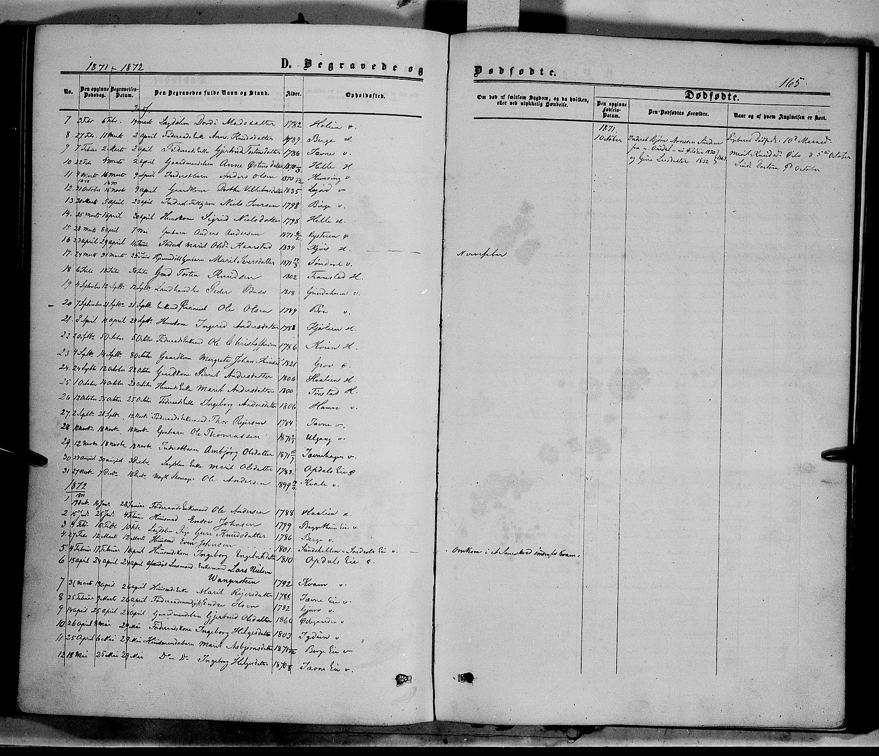 SAH, Vang prestekontor, Valdres, Ministerialbok nr. 7, 1865-1881, s. 165