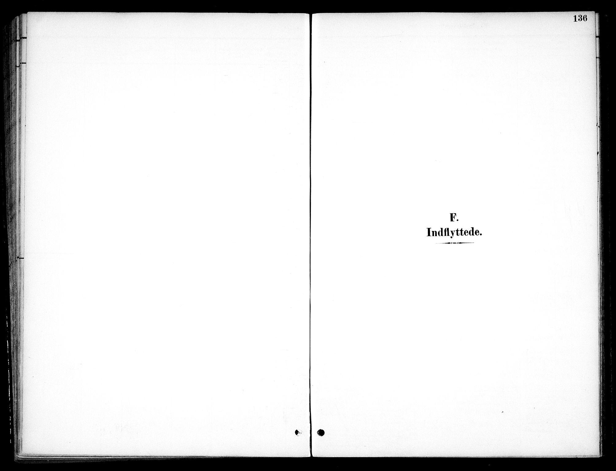SAO, Nannestad prestekontor Kirkebøker, F/Fc/L0002: Ministerialbok nr. III 2, 1893-1907, s. 136