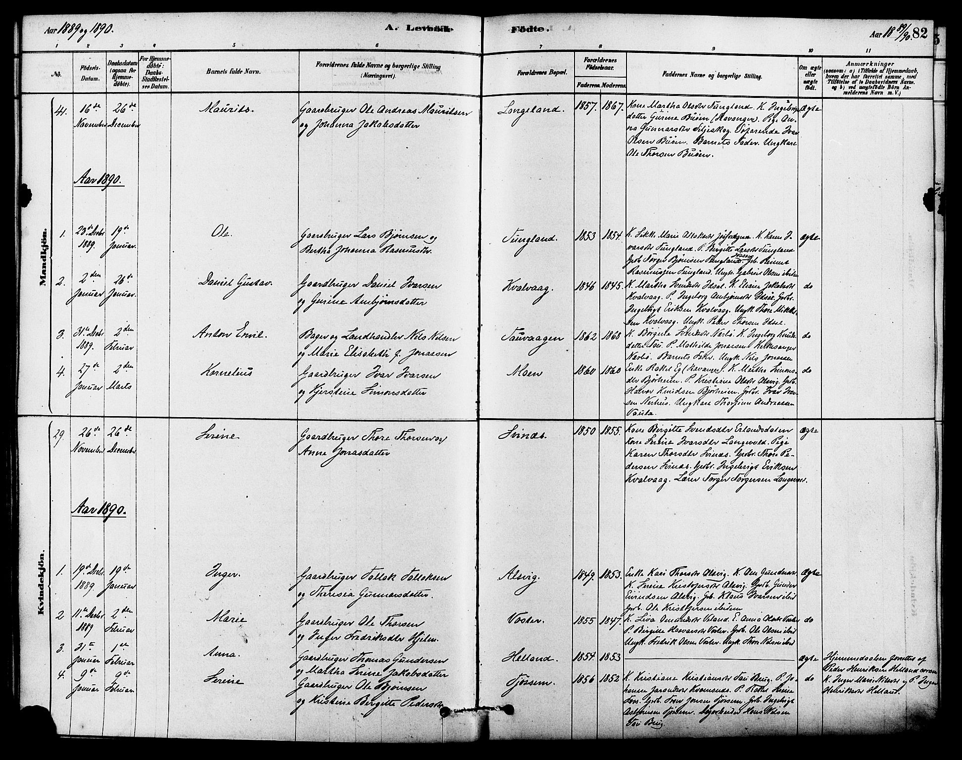 SAST, Strand sokneprestkontor, H/Ha/Haa/L0009: Ministerialbok nr. A 9, 1877-1908, s. 82