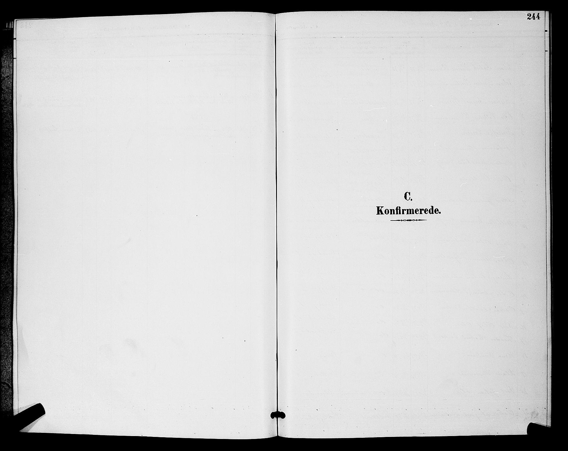 SAO, Moss prestekontor Kirkebøker, G/Ga/L0006: Klokkerbok nr. I 6, 1889-1900, s. 244