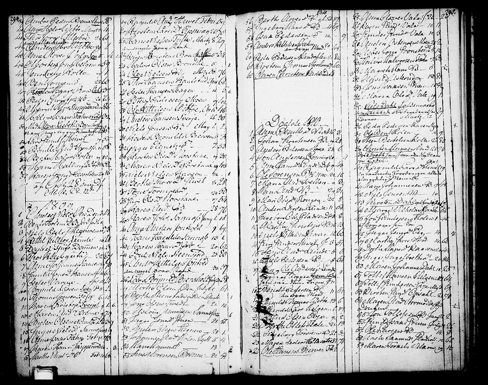 SAKO, Holla kirkebøker, F/Fa/L0002: Ministerialbok nr. 2, 1779-1814, s. 294-295