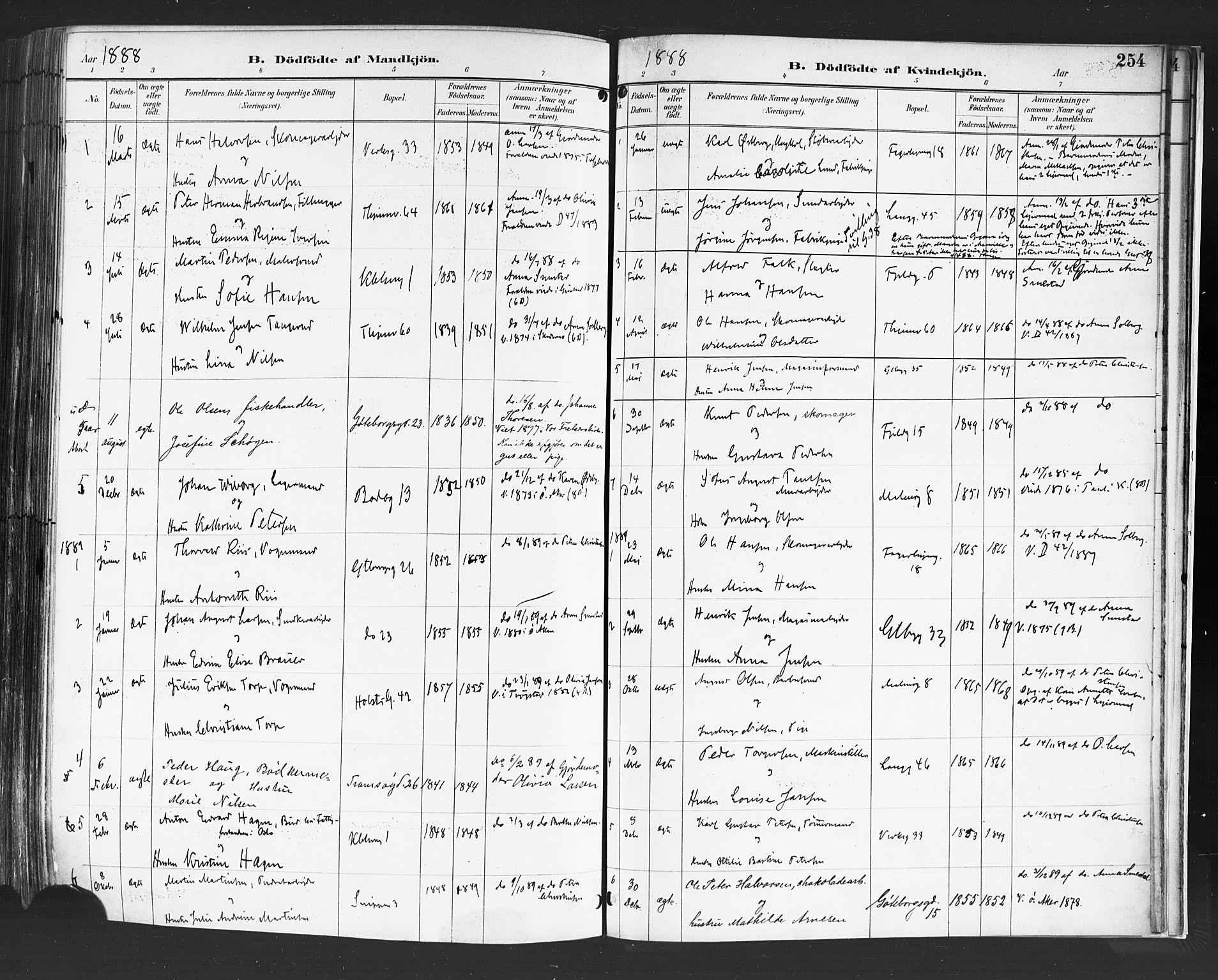 SAO, Petrus prestekontor Kirkebøker, F/Fa/L0004: Ministerialbok nr. 4, 1888-1898, s. 254