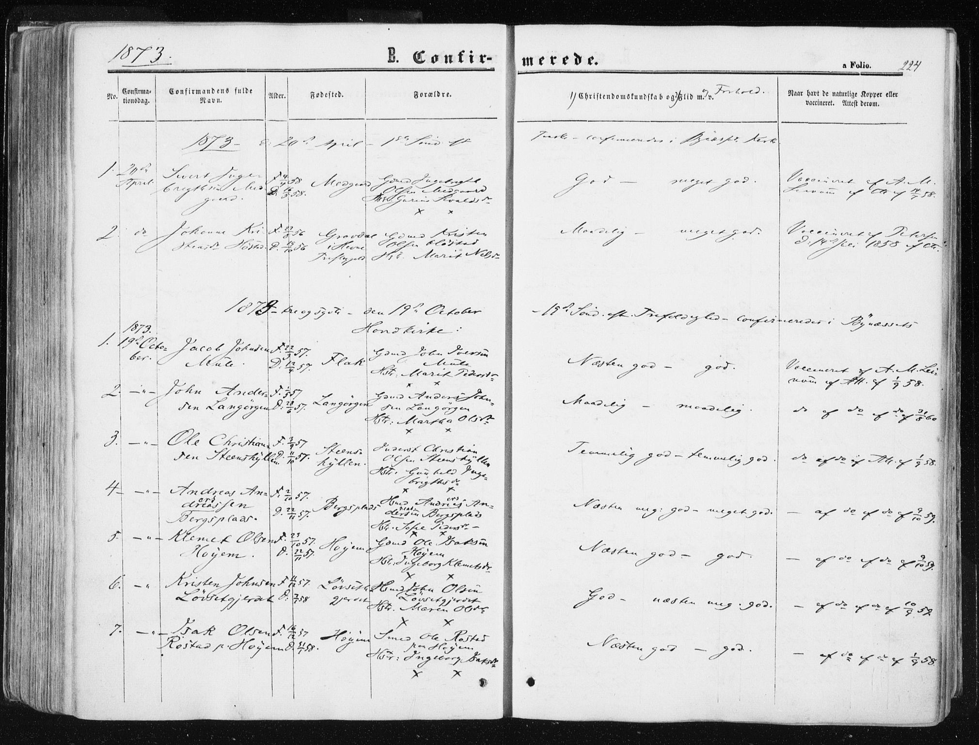 SAT, Ministerialprotokoller, klokkerbøker og fødselsregistre - Sør-Trøndelag, 612/L0377: Ministerialbok nr. 612A09, 1859-1877, s. 224