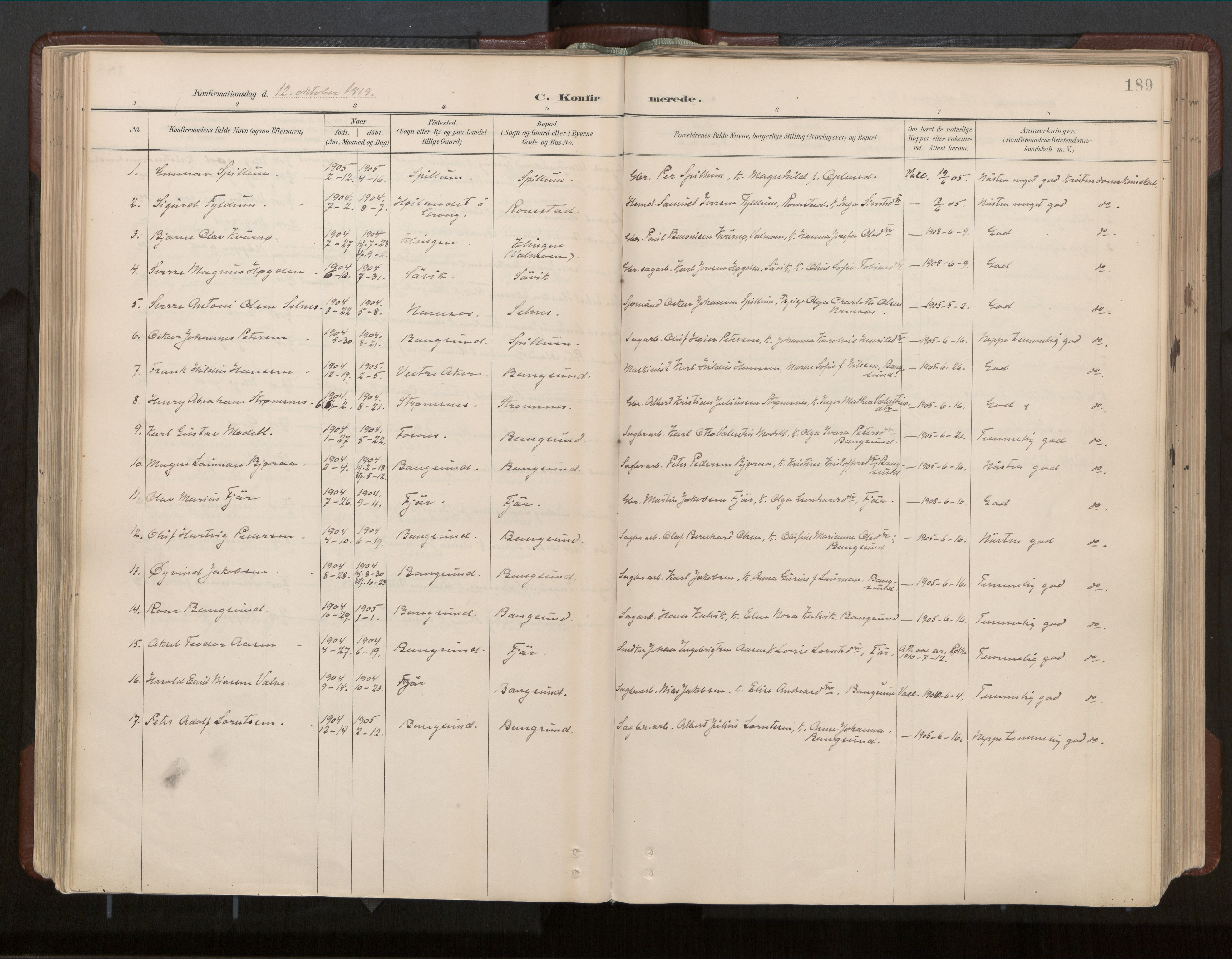 SAT, Ministerialprotokoller, klokkerbøker og fødselsregistre - Nord-Trøndelag, 770/L0589: Ministerialbok nr. 770A03, 1887-1929, s. 189